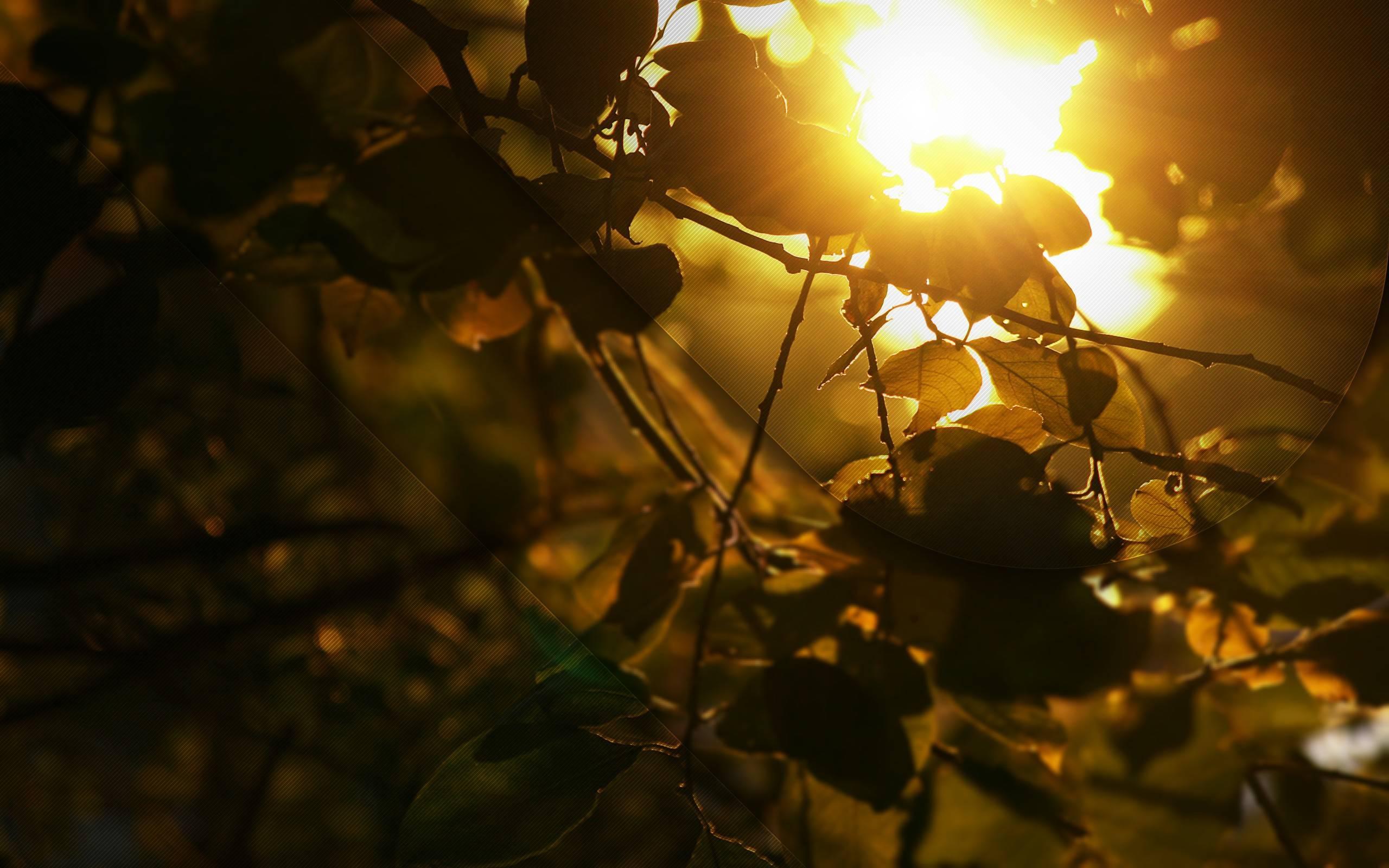 Related For Beautiful Sunlight Wallpaper. Beautiful Sunlight