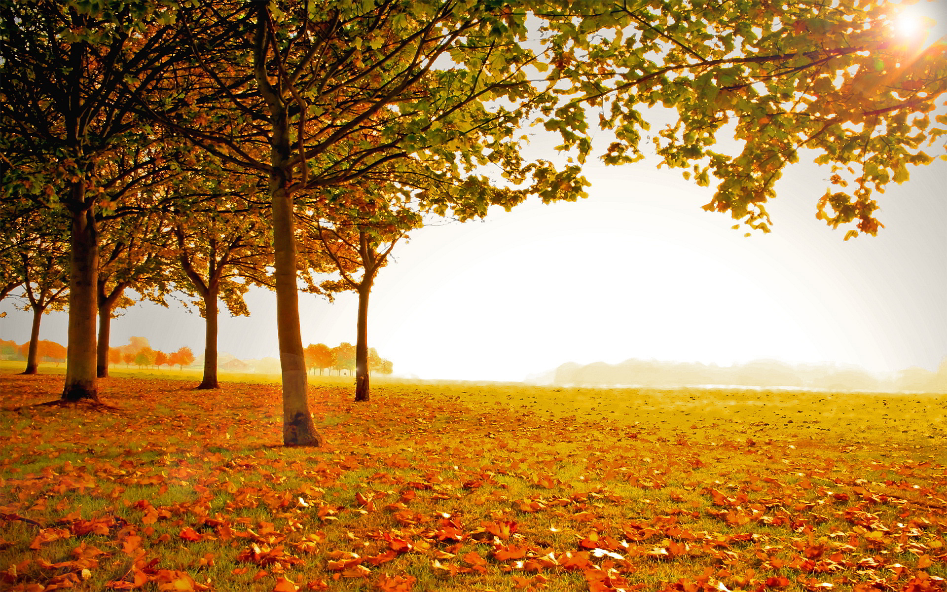 Fall landscape search results - Page 28. EskiPaper.com Cool Wallpapers