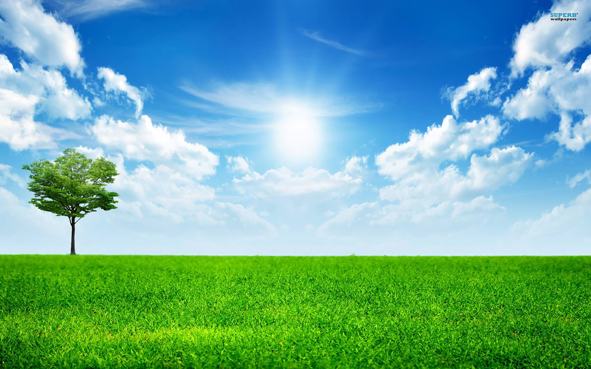 A Bright Sunny Day wallpaper