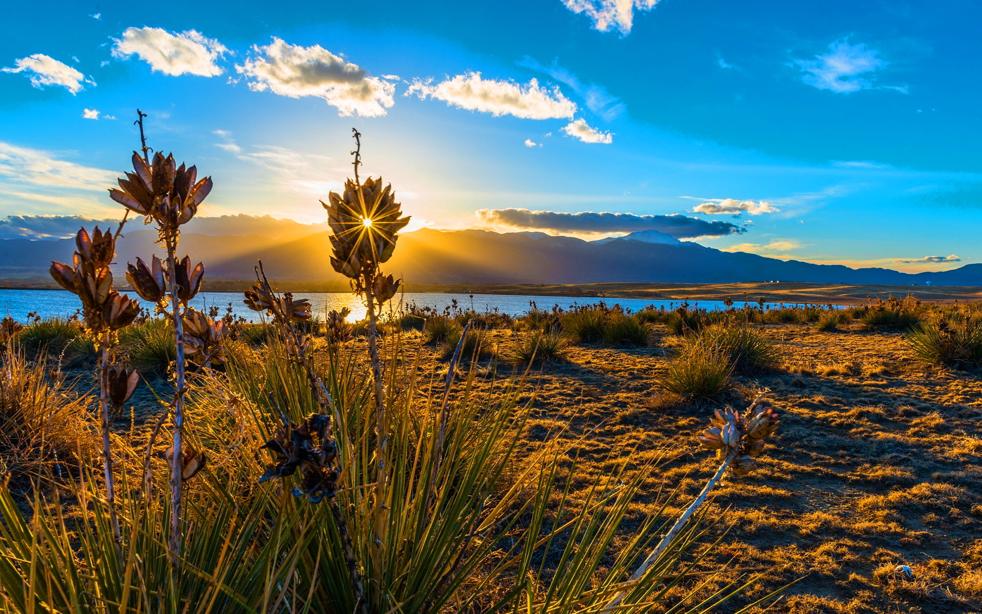 Sunset bluestem praire colorado springs