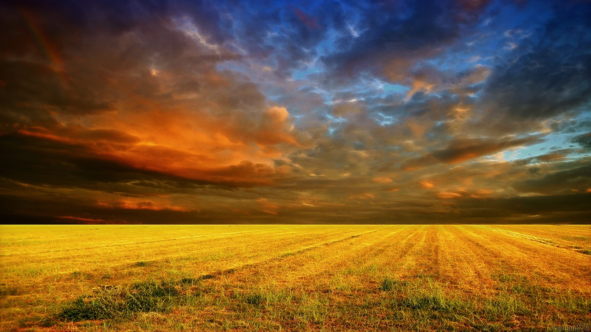 Cloudy sunset cornfield Wallpaper in 1920x1080 HD Resolutions