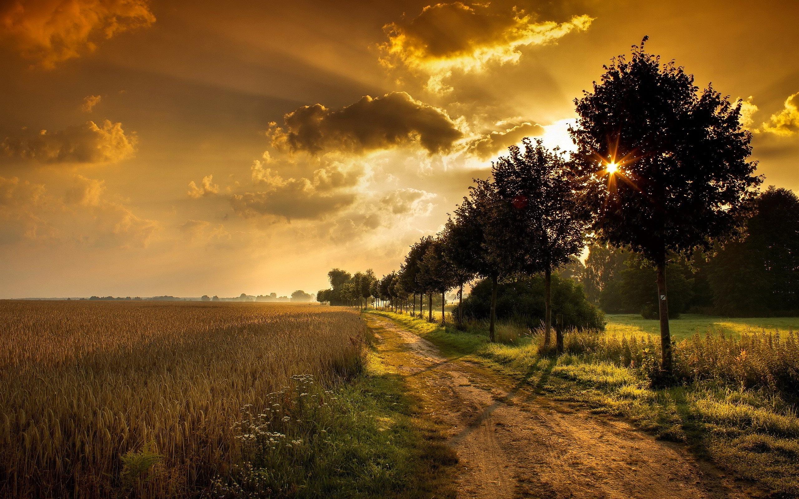 Sunset Field Road