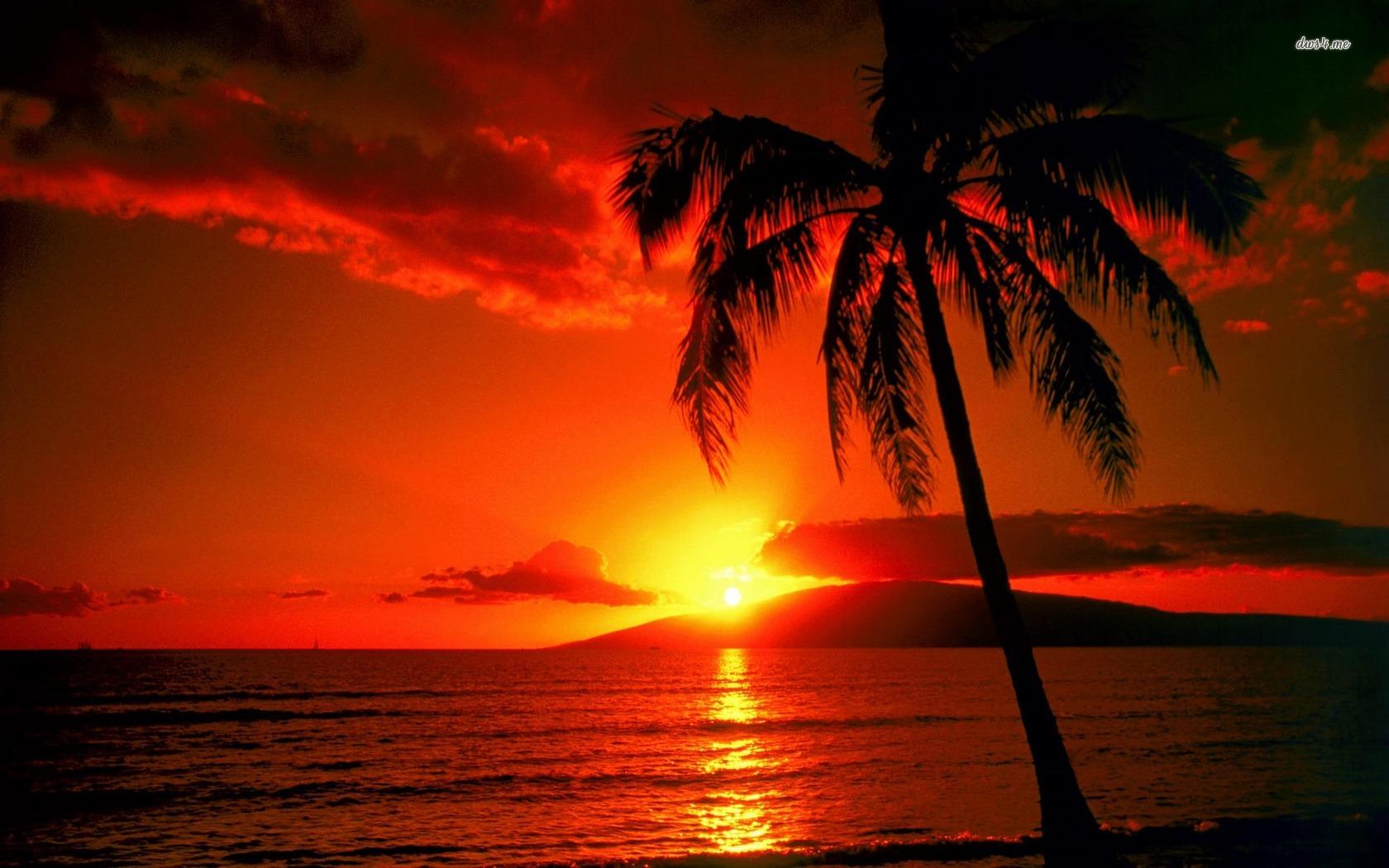 Sunset hawaii beach