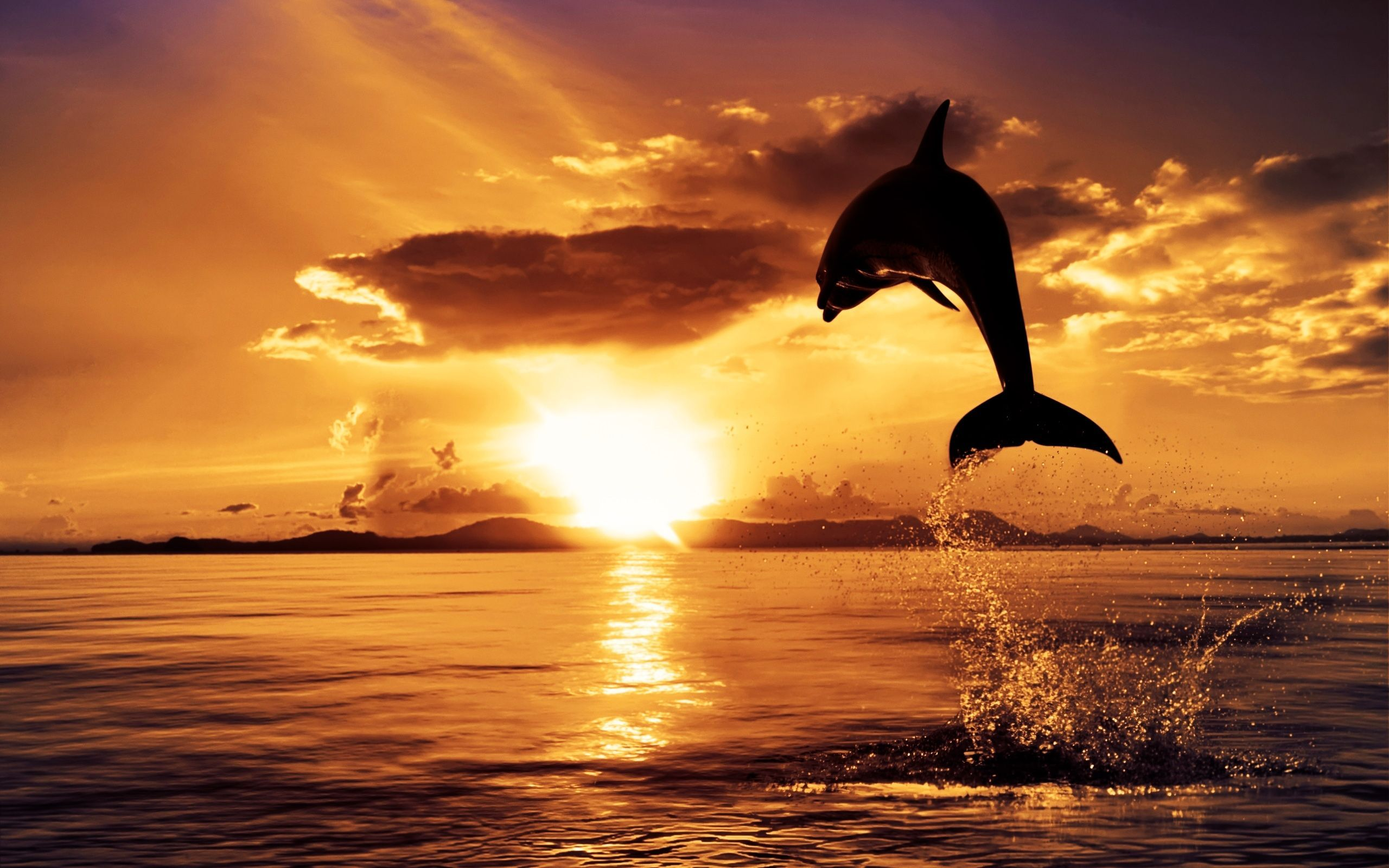... sunset-hd-wallpapers-10 ...