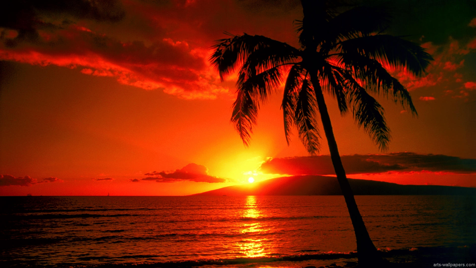 Sunset Tropical Island
