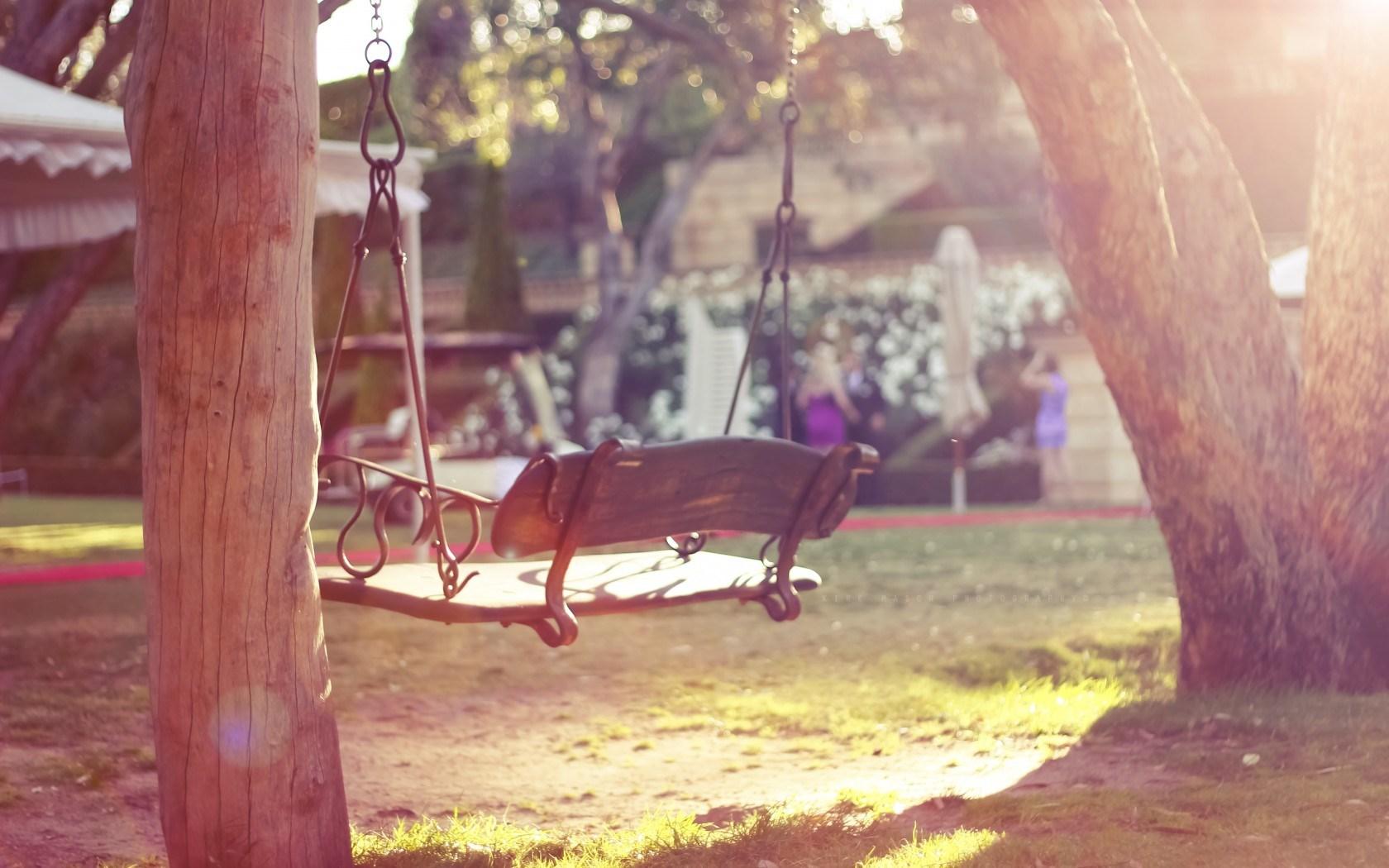 Swing Trees Summer Yard