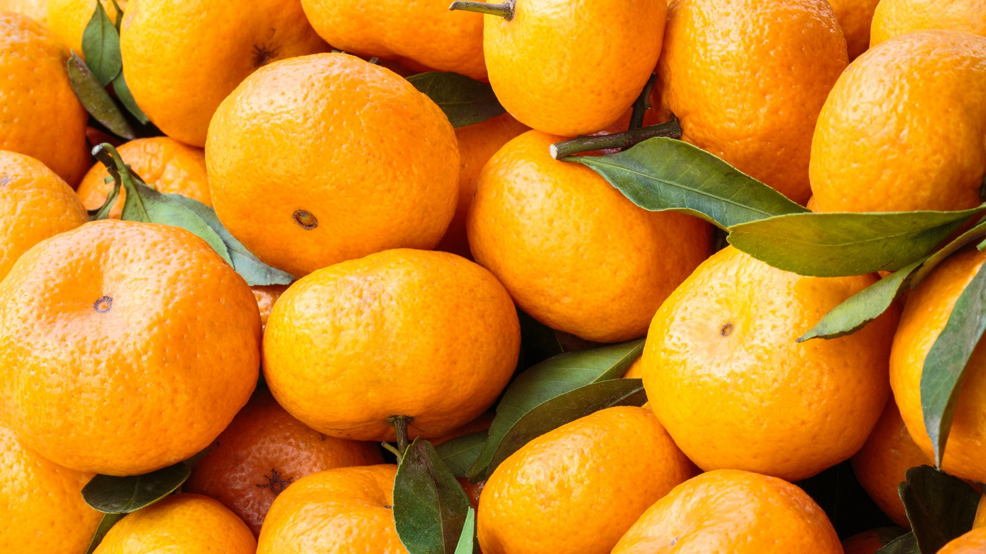 Desktop wallpapers Tangerines.