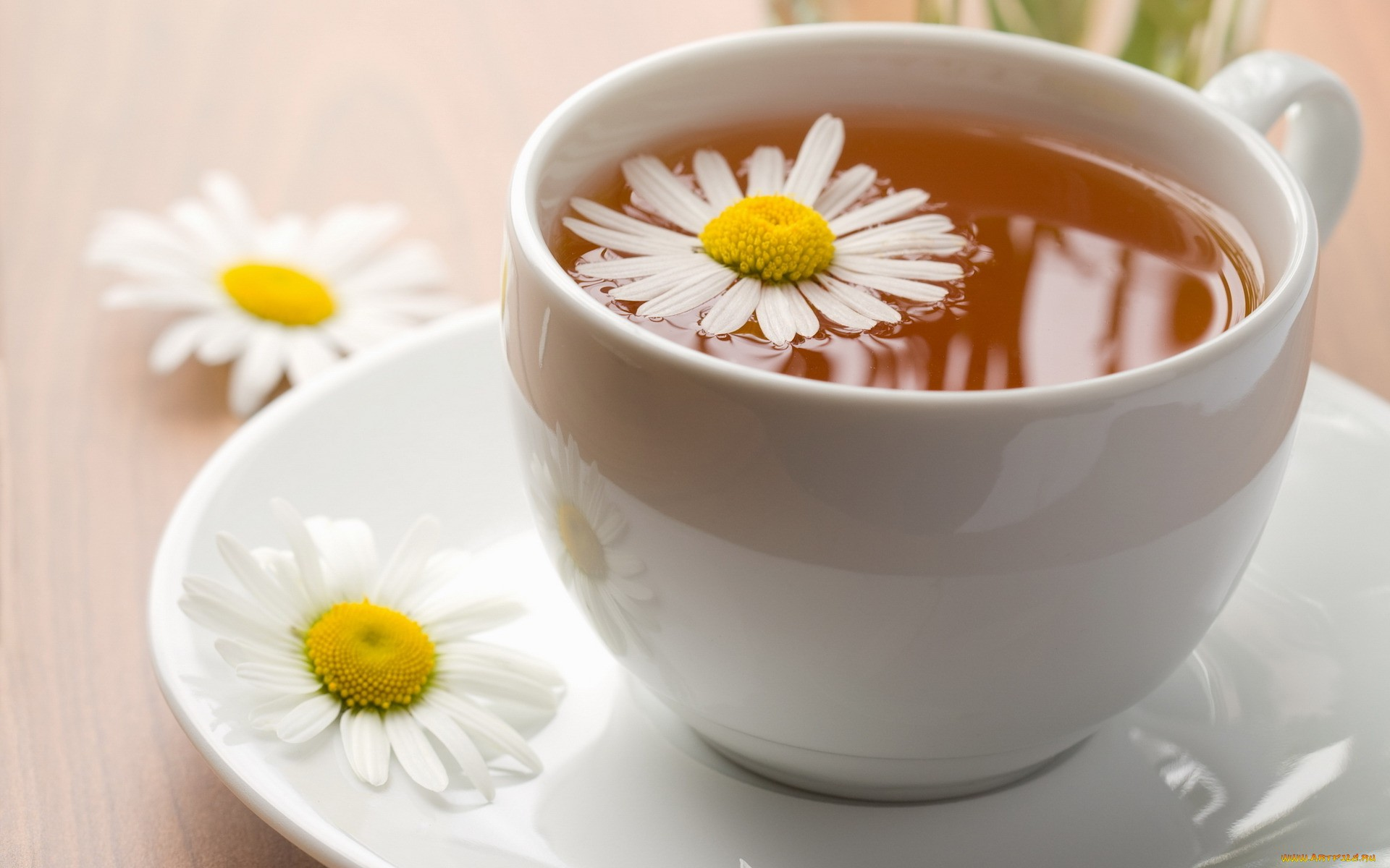 To set this flower tea cup as wallpaper background on your Desktop, SmartPhone, Tablet, Laptop, iphone, ipad click above to open in a new window in full ...