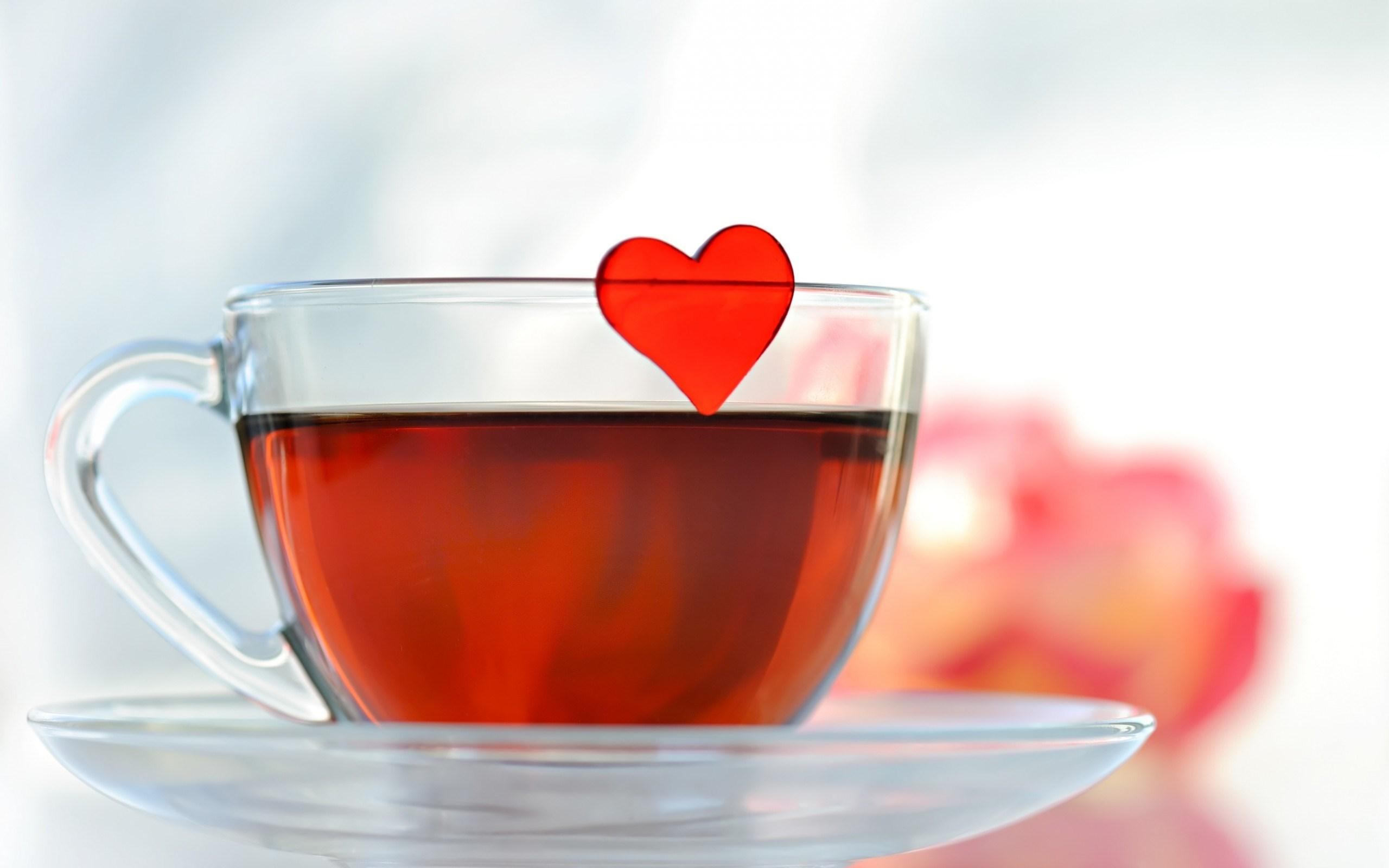 Tea Cup Wallpaper 42216 2560x1600 px