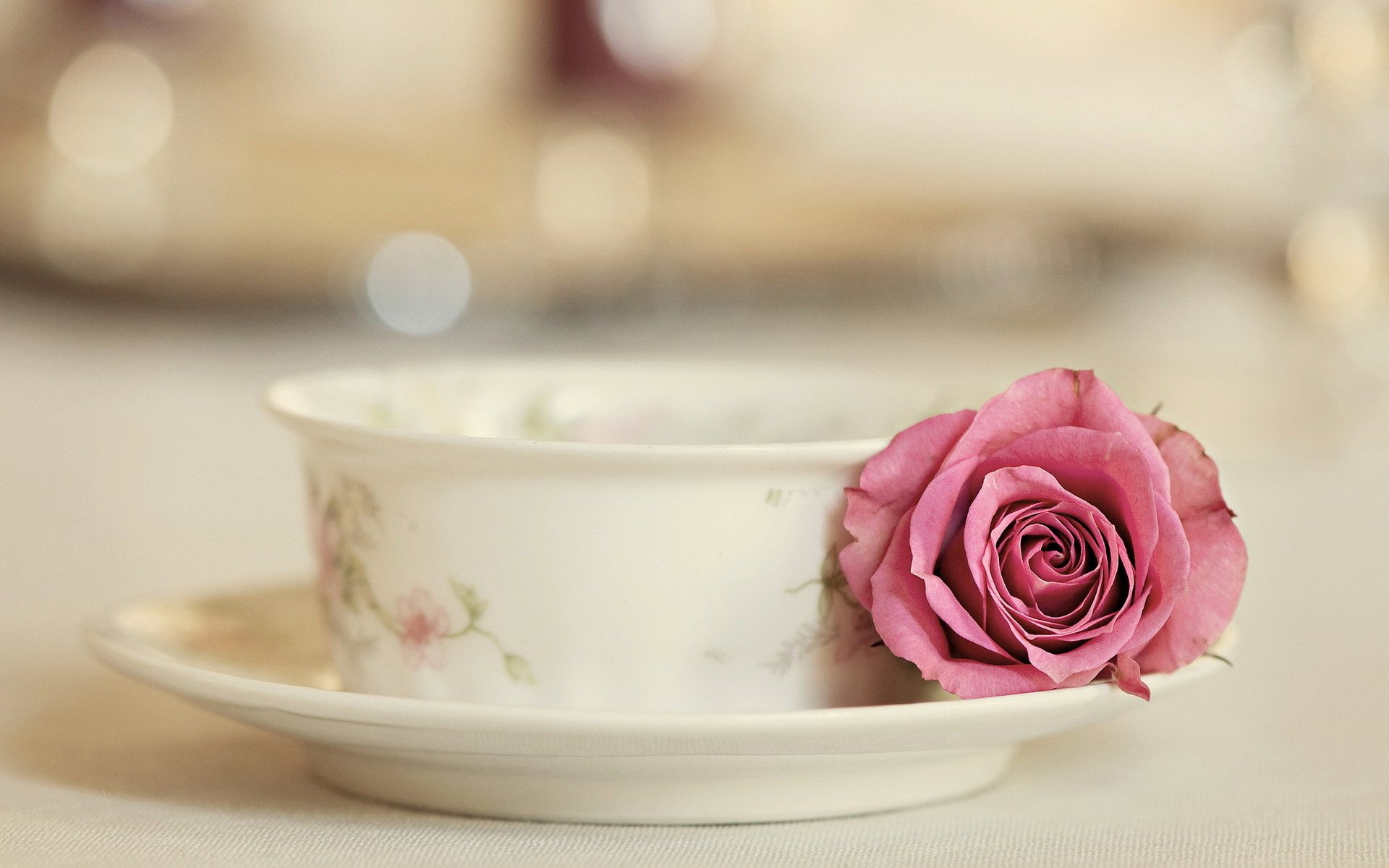 Beautiful Tea Cup Wallpaper