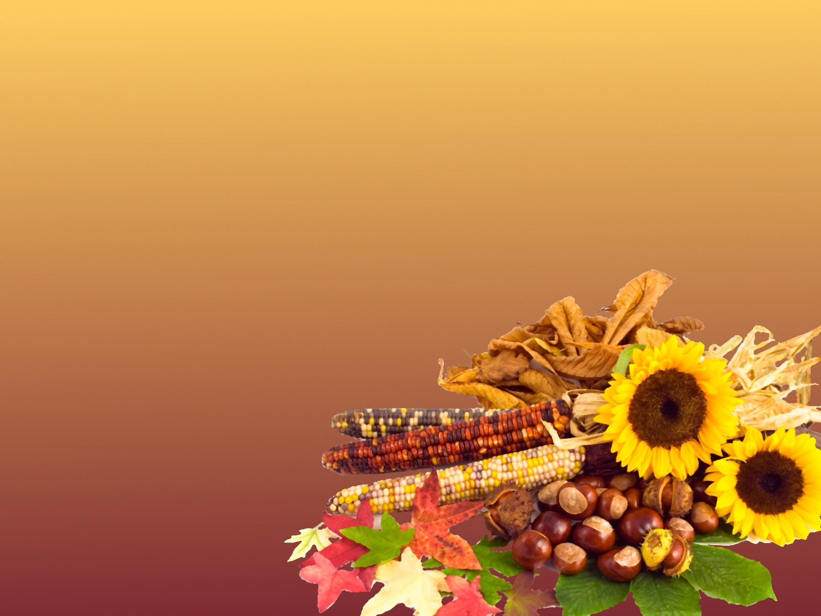 Thanksgiving Desktop Background