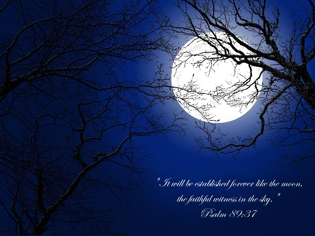 Moon The Moon