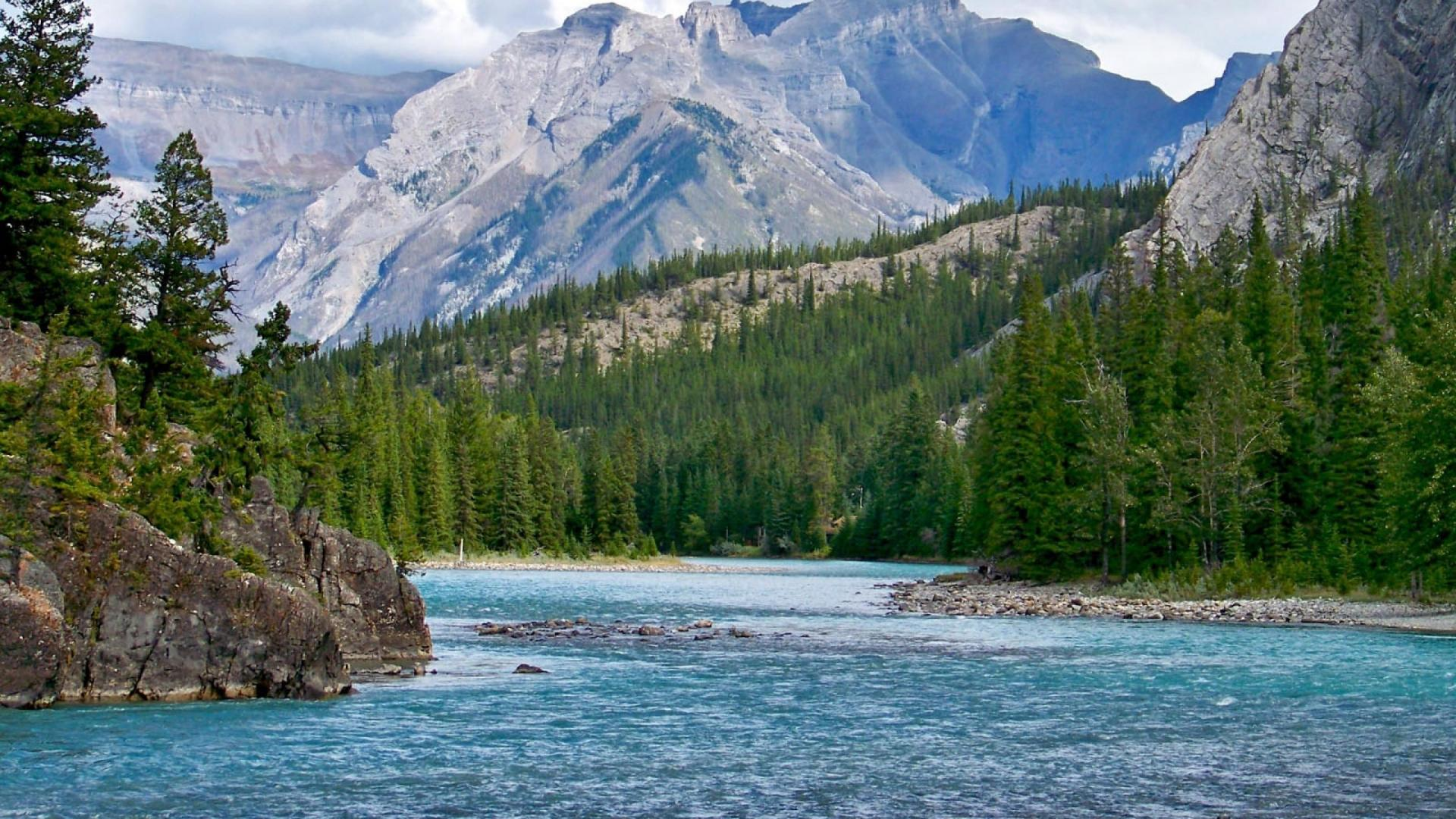 Bow River In The Rockies Of Alberta wallpaper