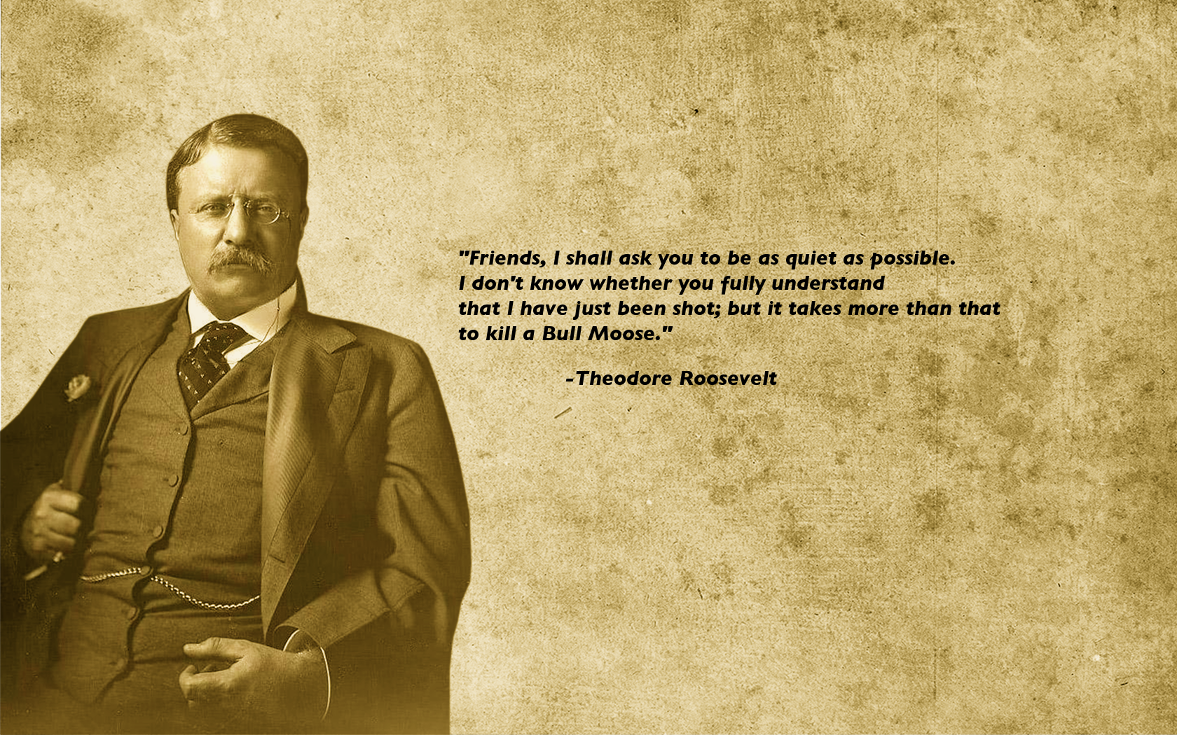 Teddy Roosevelt Quote Theodore Roosevelt Wallpaper  1680X1050  65191
