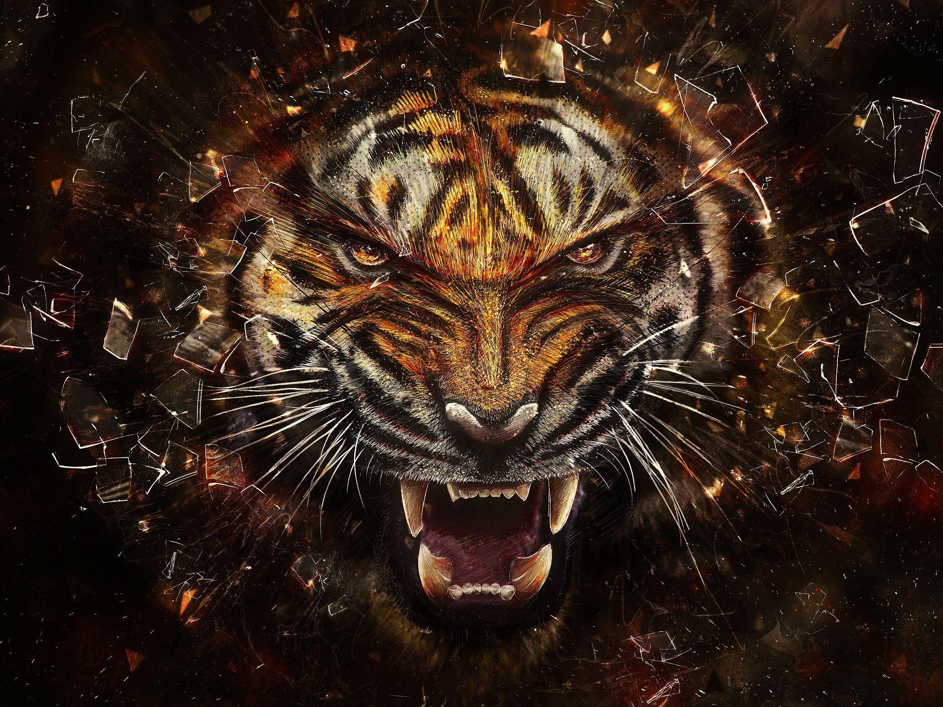 HD Wallpaper   Background ID:472563. 1920x1440 Animal Tiger