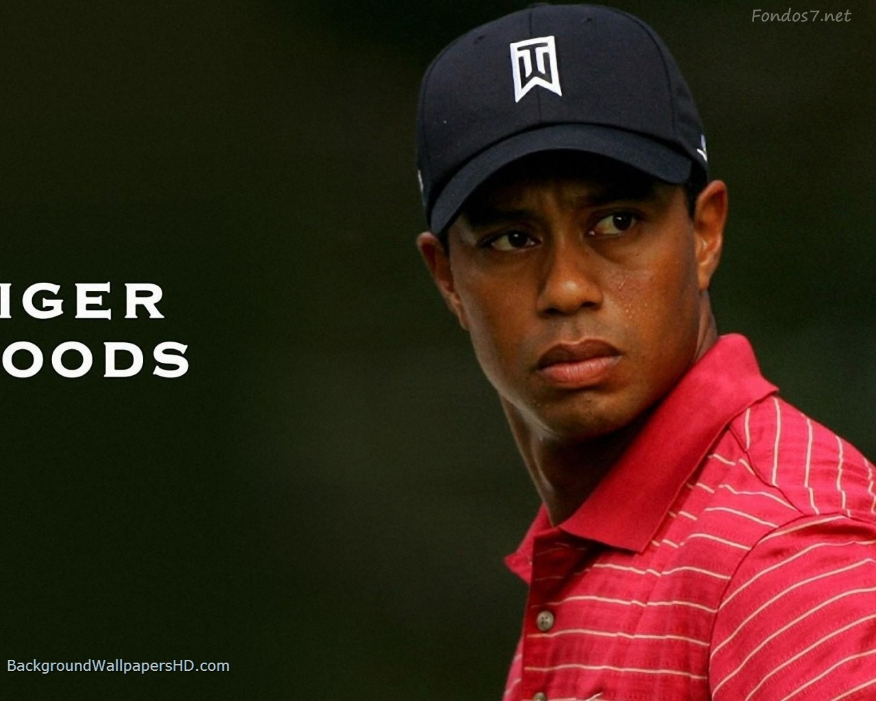thesis statement on tiger woods Tiger woods thesis writing service to assist in writing a graduate tiger woods dissertation for a university dissertation course.