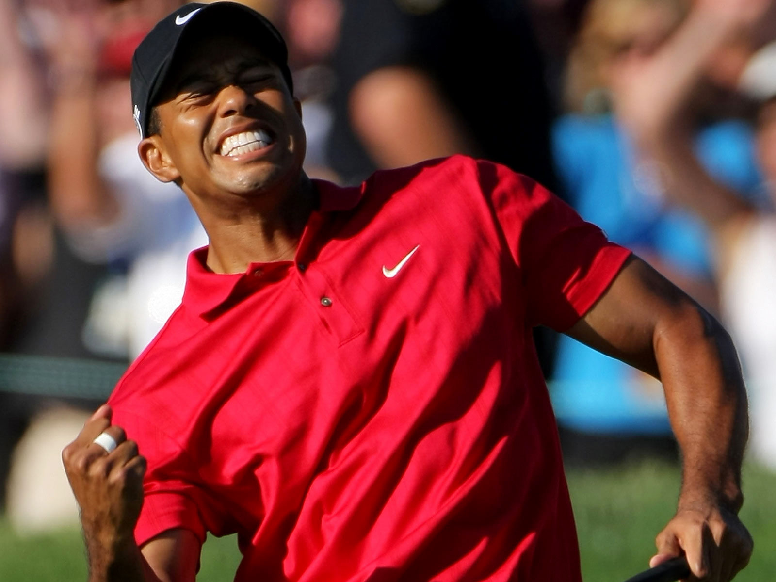 essay tiger woods Tiger's real name: eldrick woodsthe nick-name 'tiger' was given to him by his father it's thesame nick-name of a south vietnamese combat buddy,nguyen phong, who.