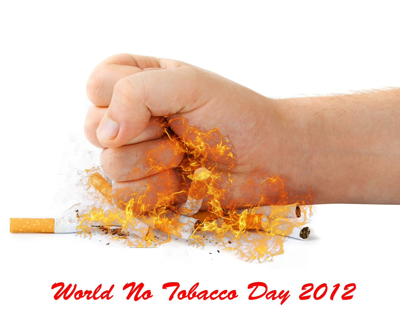 World No Tobacco Day 2012