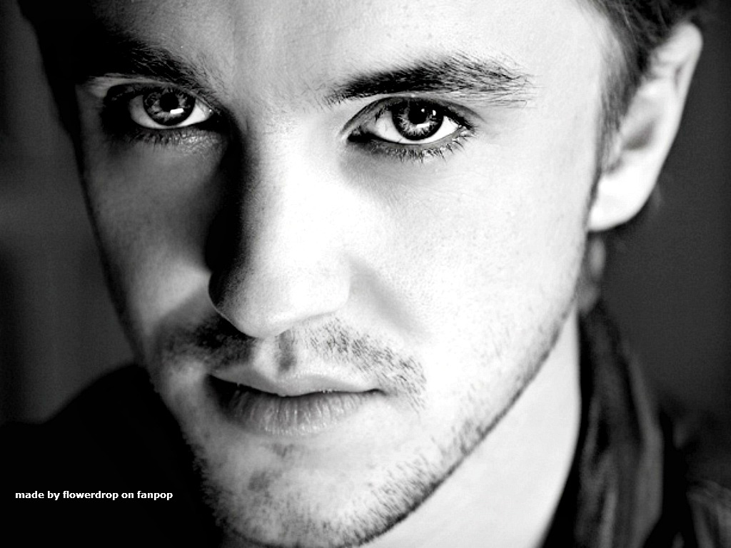 Tom Felton Tom Felton Wallpaper - Photoshoots