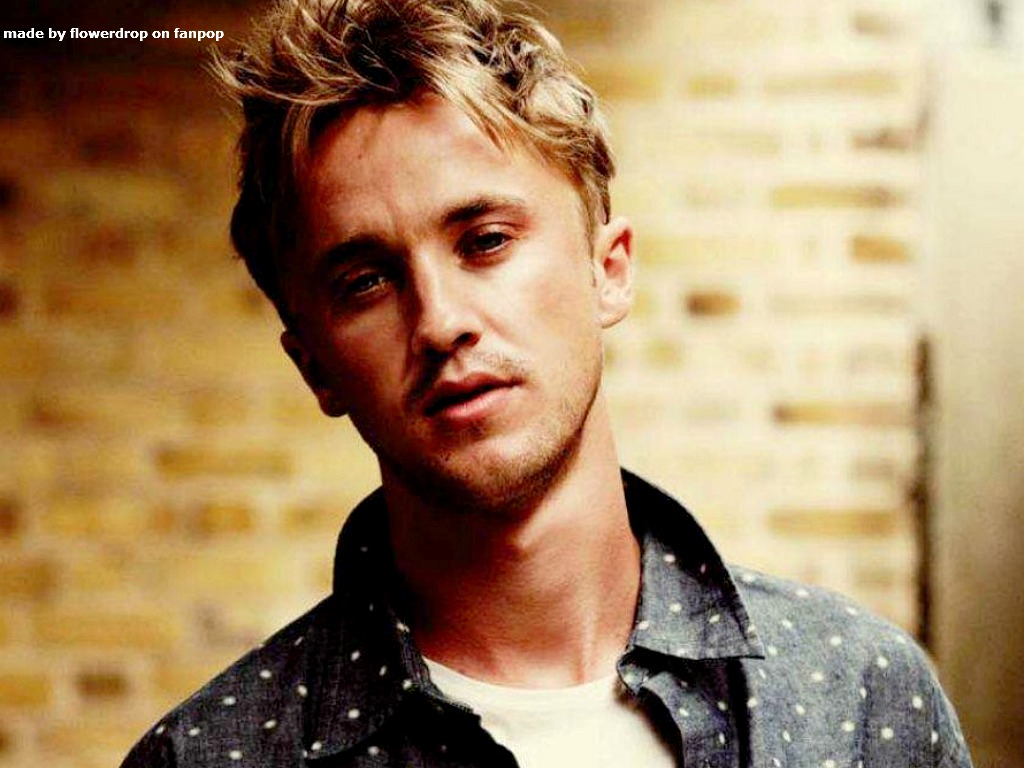 Tom Felton Tom Felton Wallpaper