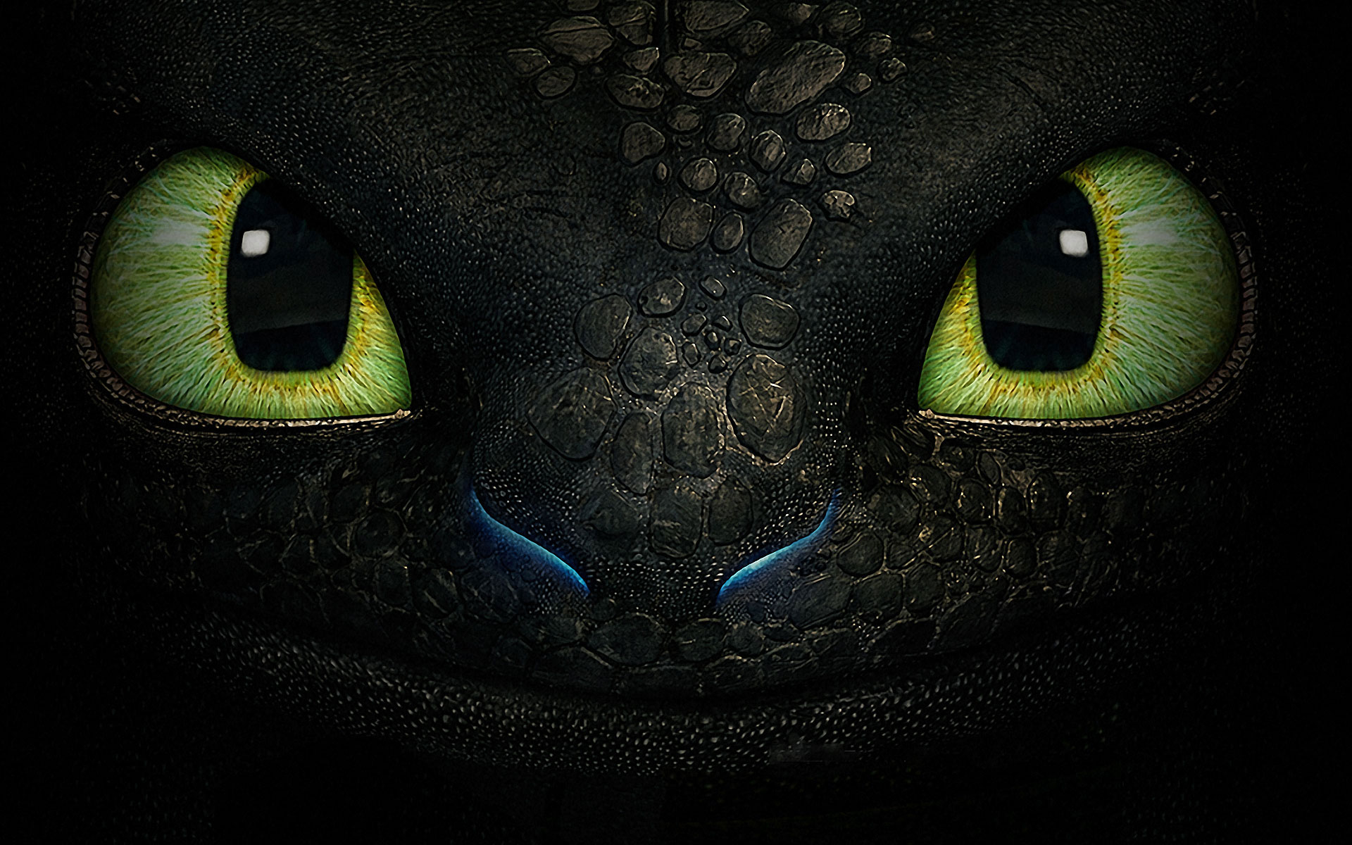 Toothless Dragon HD