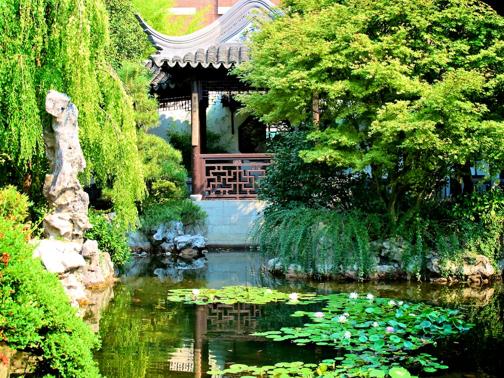 The Garden features more than 300 plant species and cultivars found in traditional Chinese gardens.