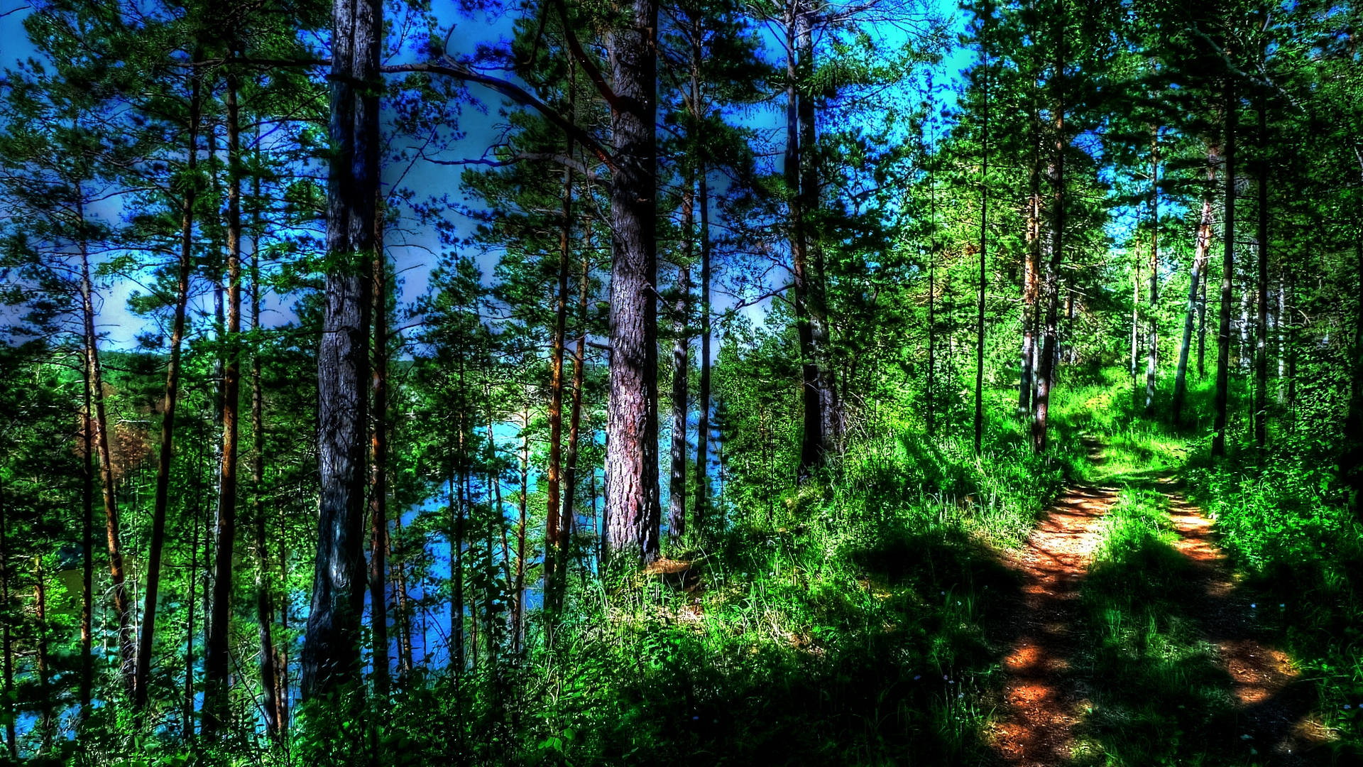 ... Trail Wallpaper ...