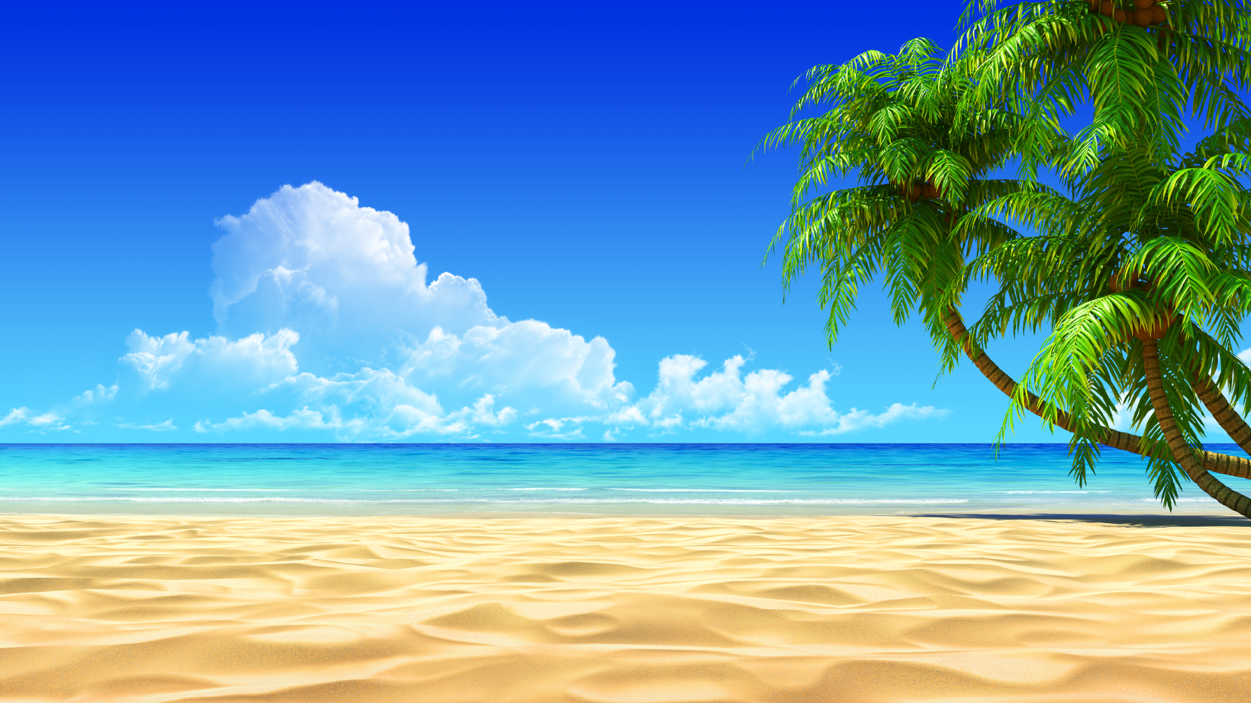 Tropical Beach Images Hd Wallpapers Pulse Xpx