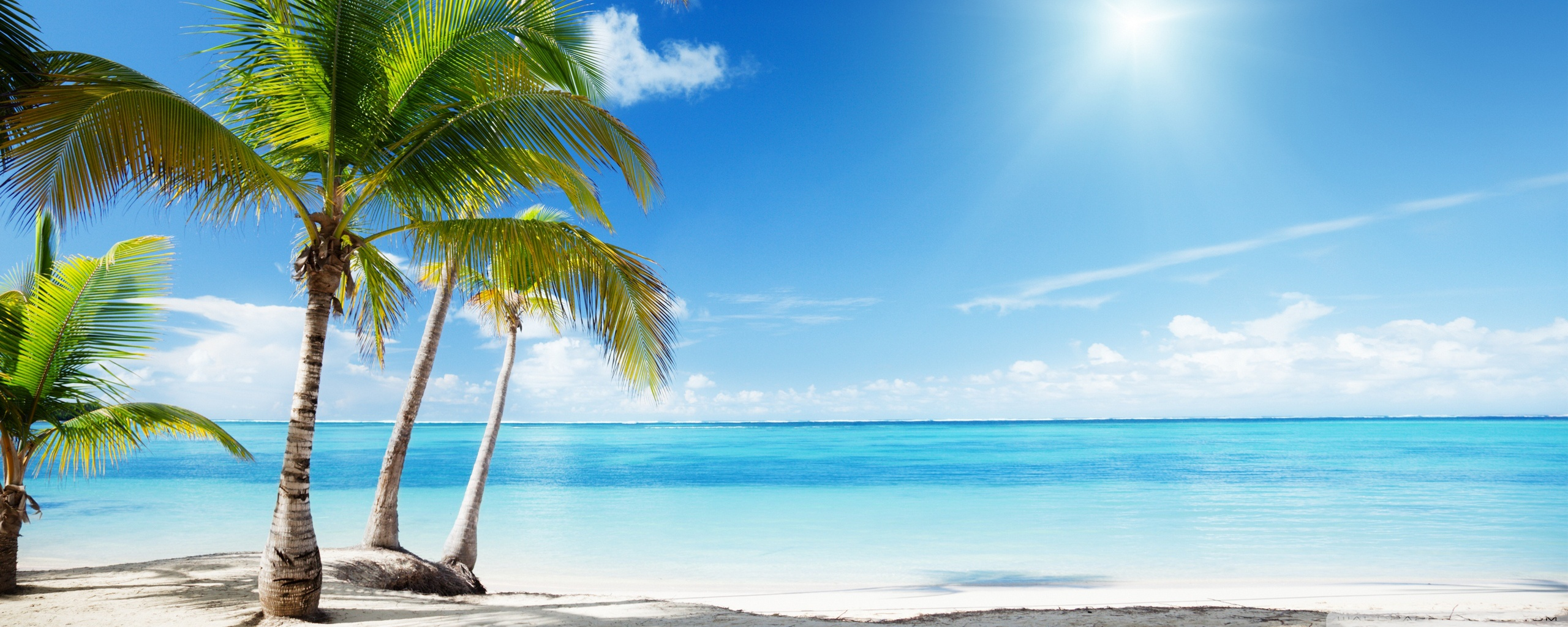 3 Monitor Chair Tropical Beach Paradise Wallpaper 2560x1024 32271