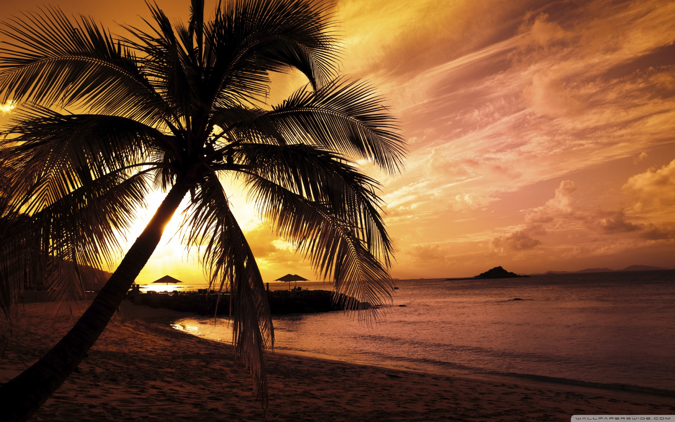 Tropical beach sunset hd