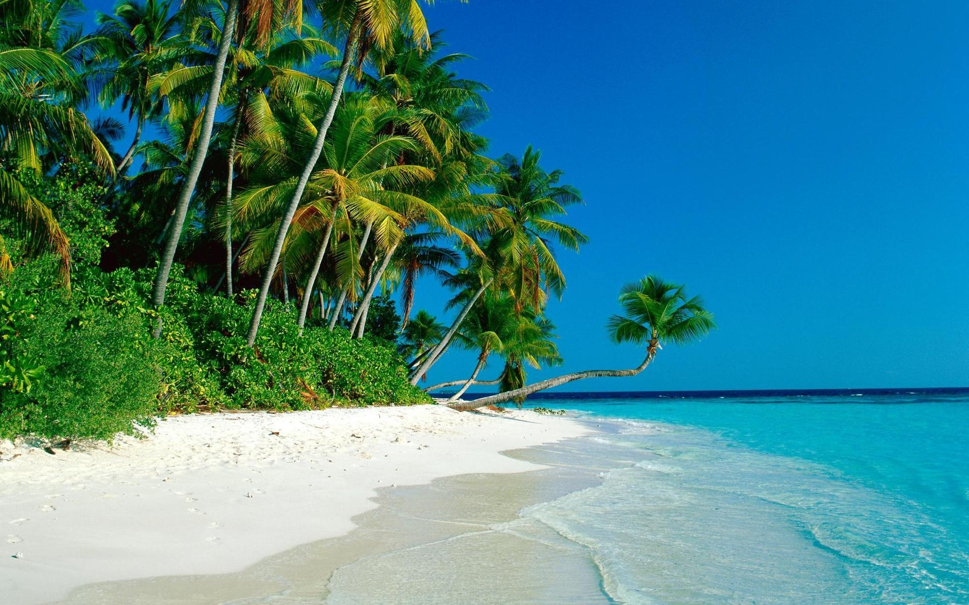 Tropical Beach Cook Islands Wallpaper Xpx 1920x1200px
