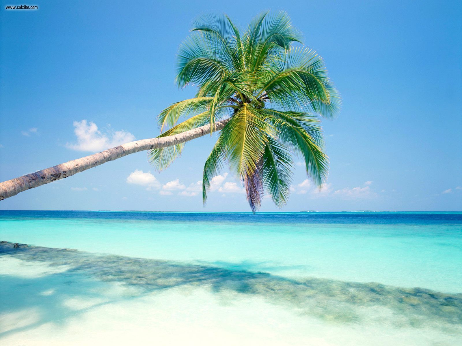 Tropical island maldives