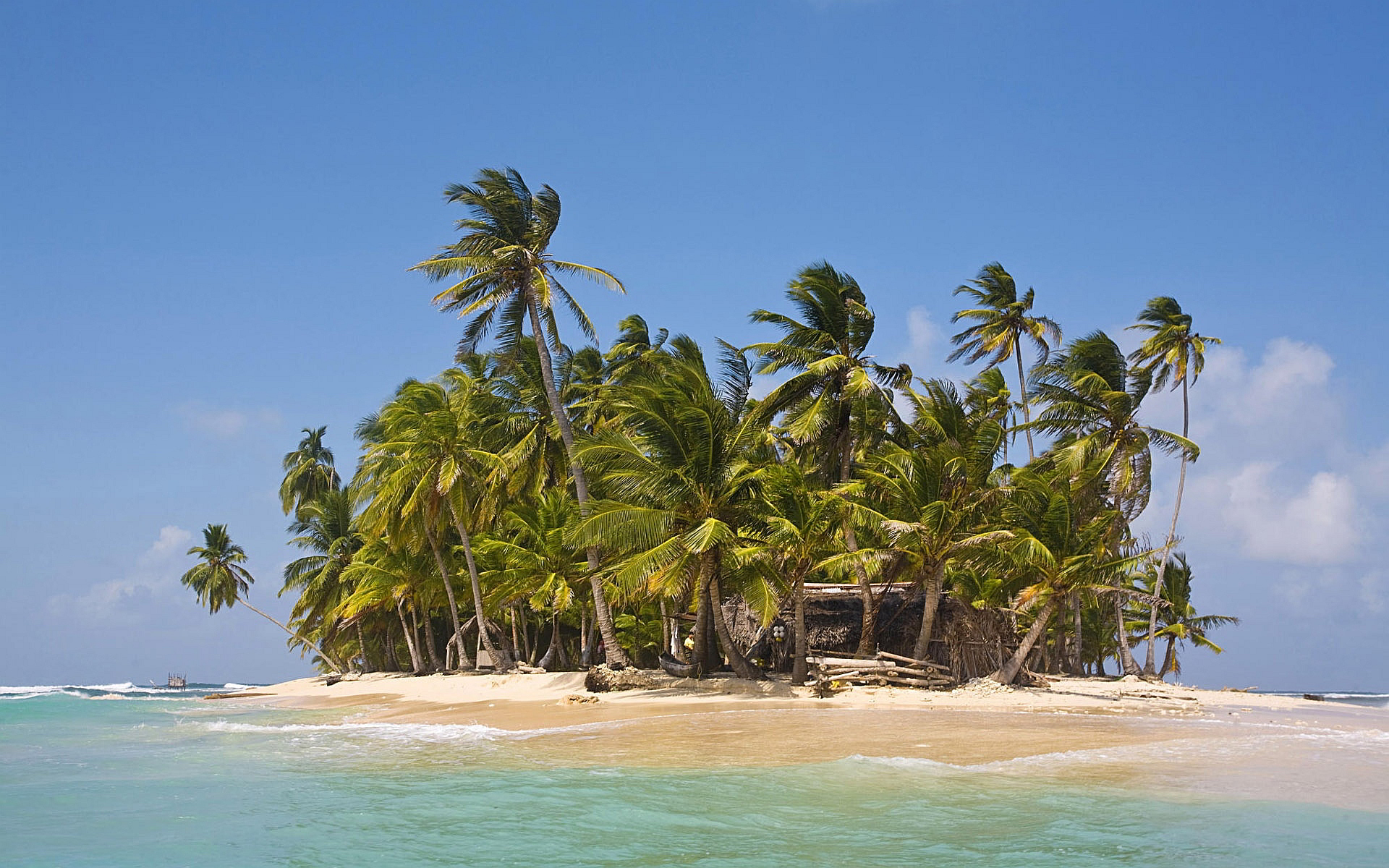 Tropical Palm Island