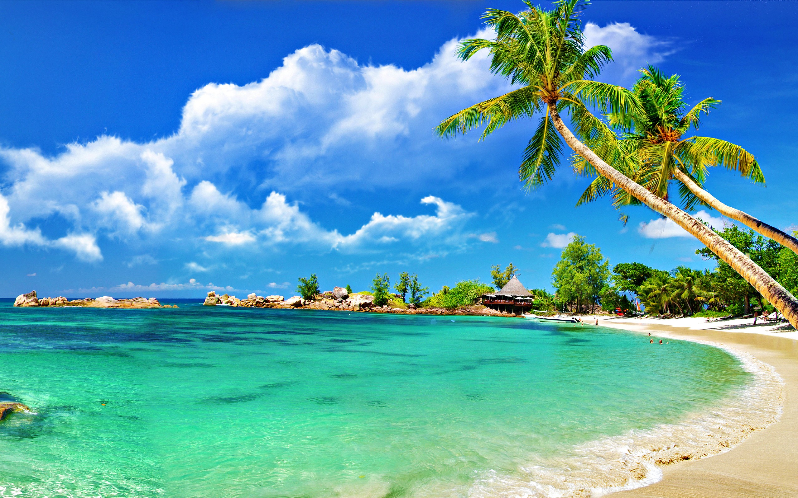 Tropics beach