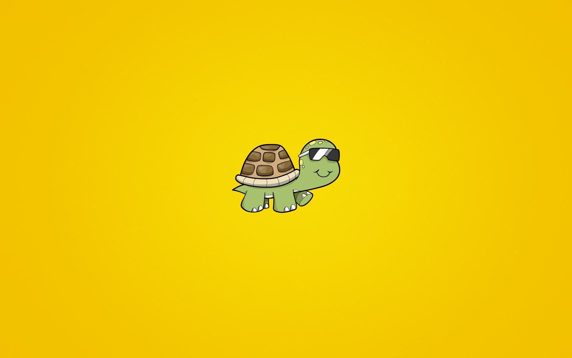 Turtle Sunglasses Art