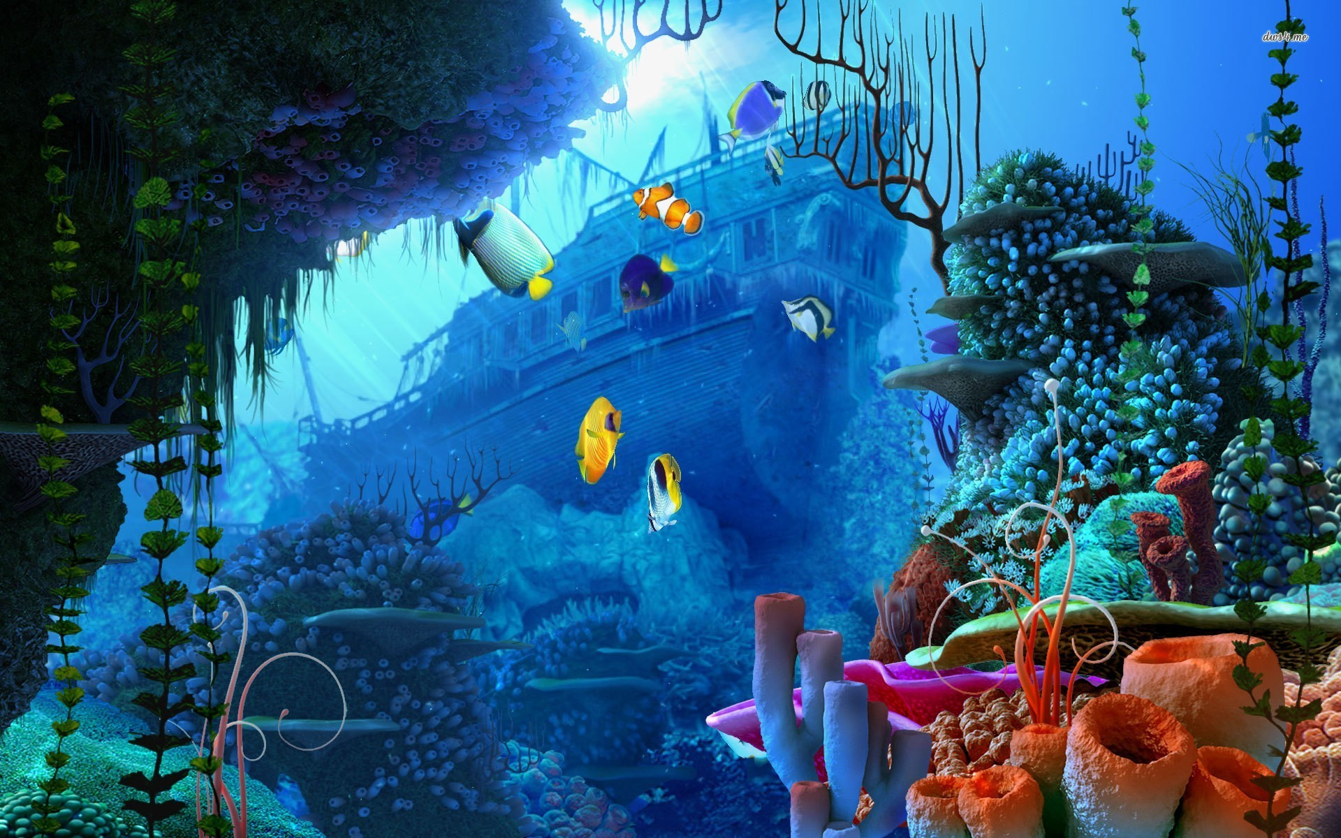 Underwater Wallpaper