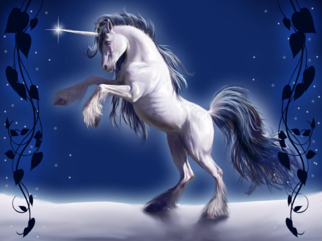 Unicorn Pictures