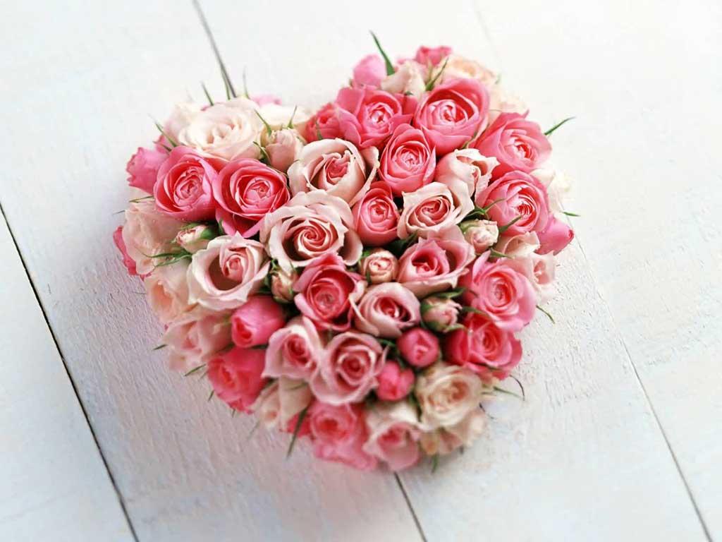 Valentine Flower Background