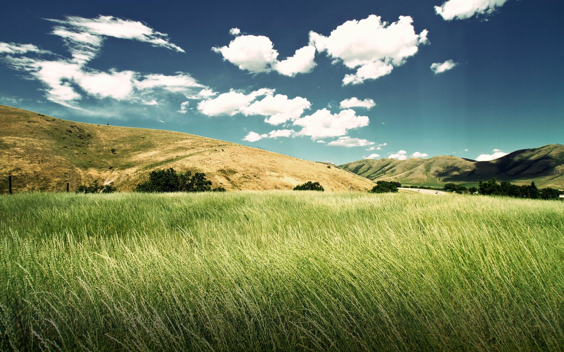 Green Valley Wide Desktop Background wallpaper