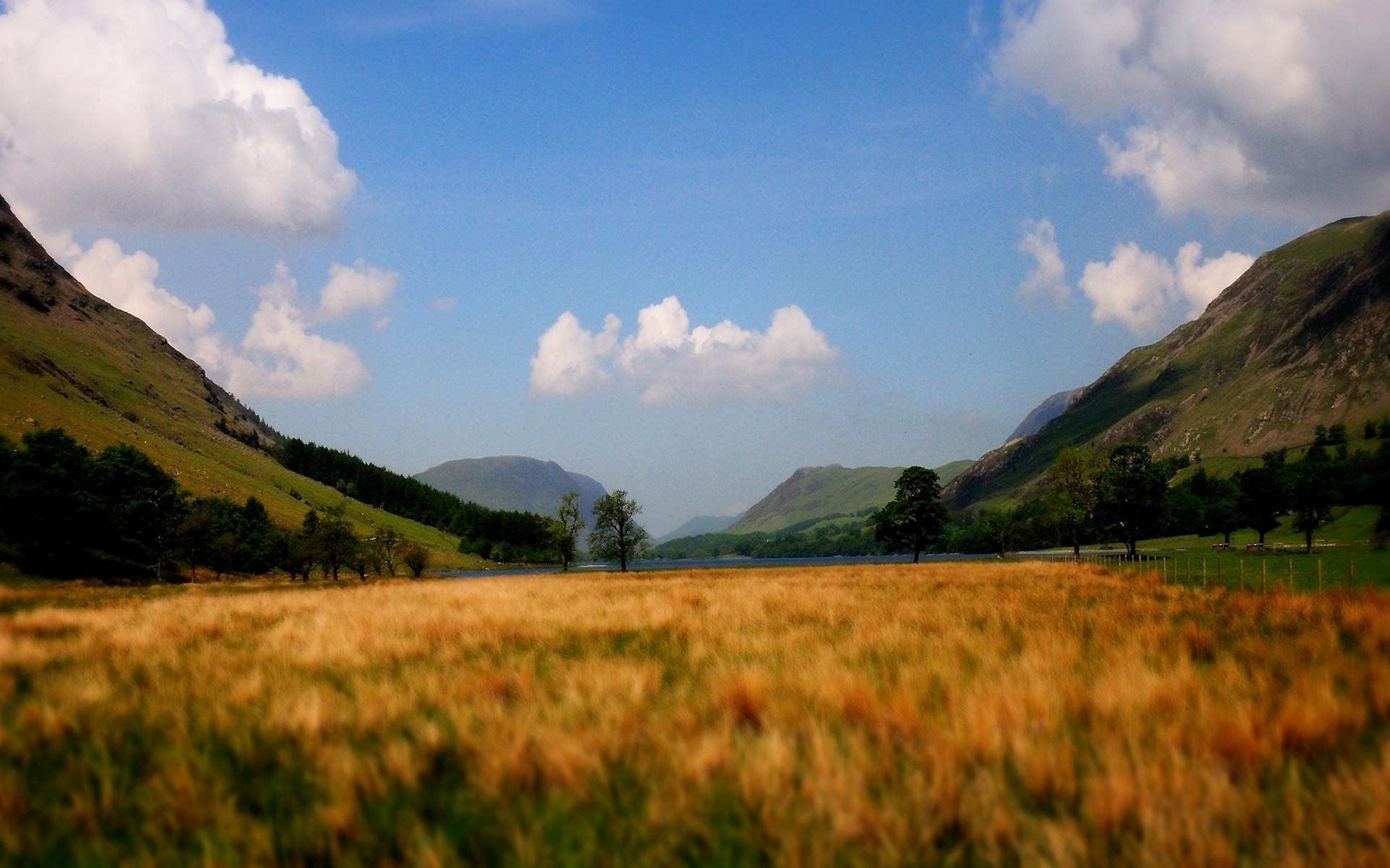 Valley cornfield hills
