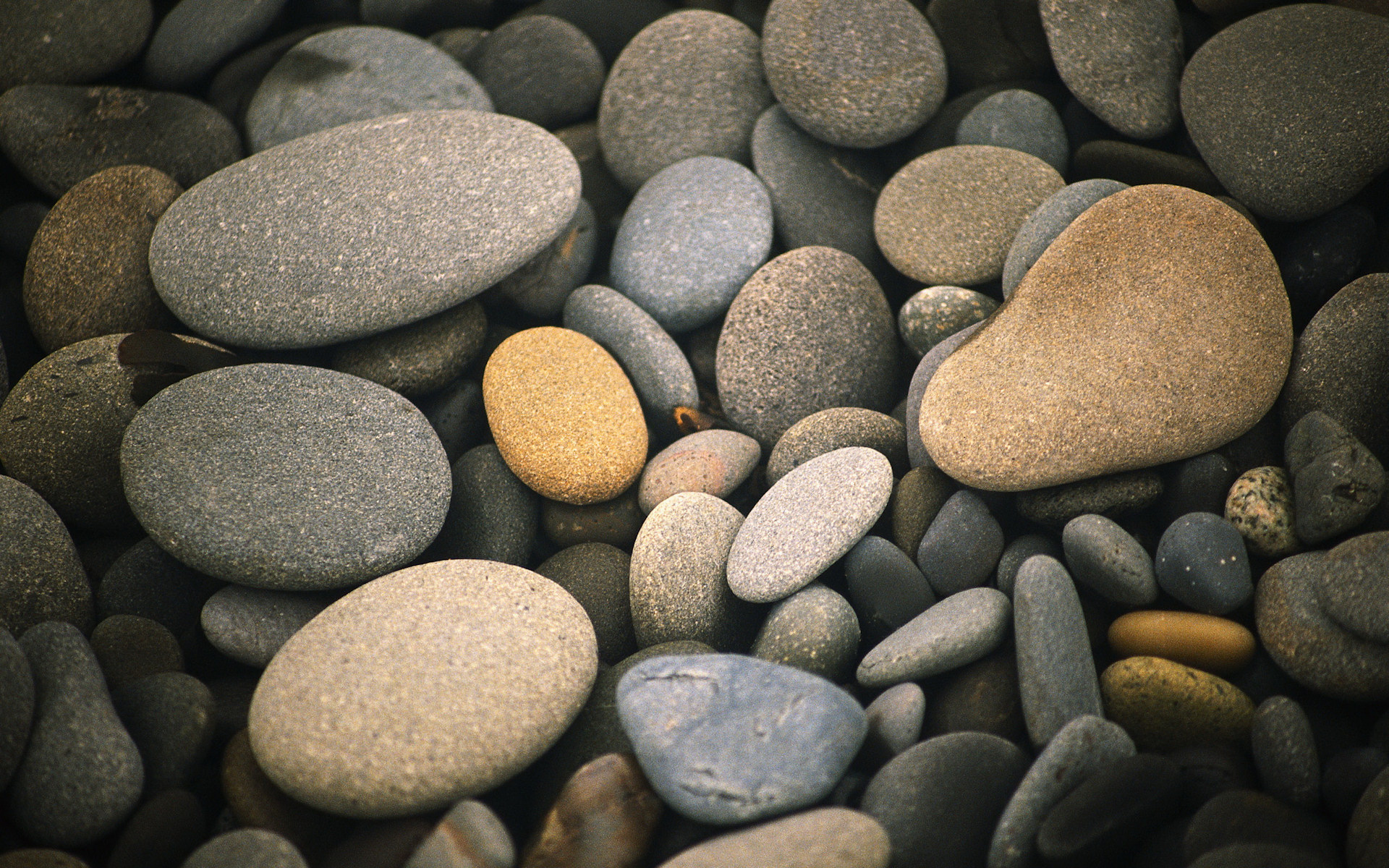 Various Pebbles Wallpaper
