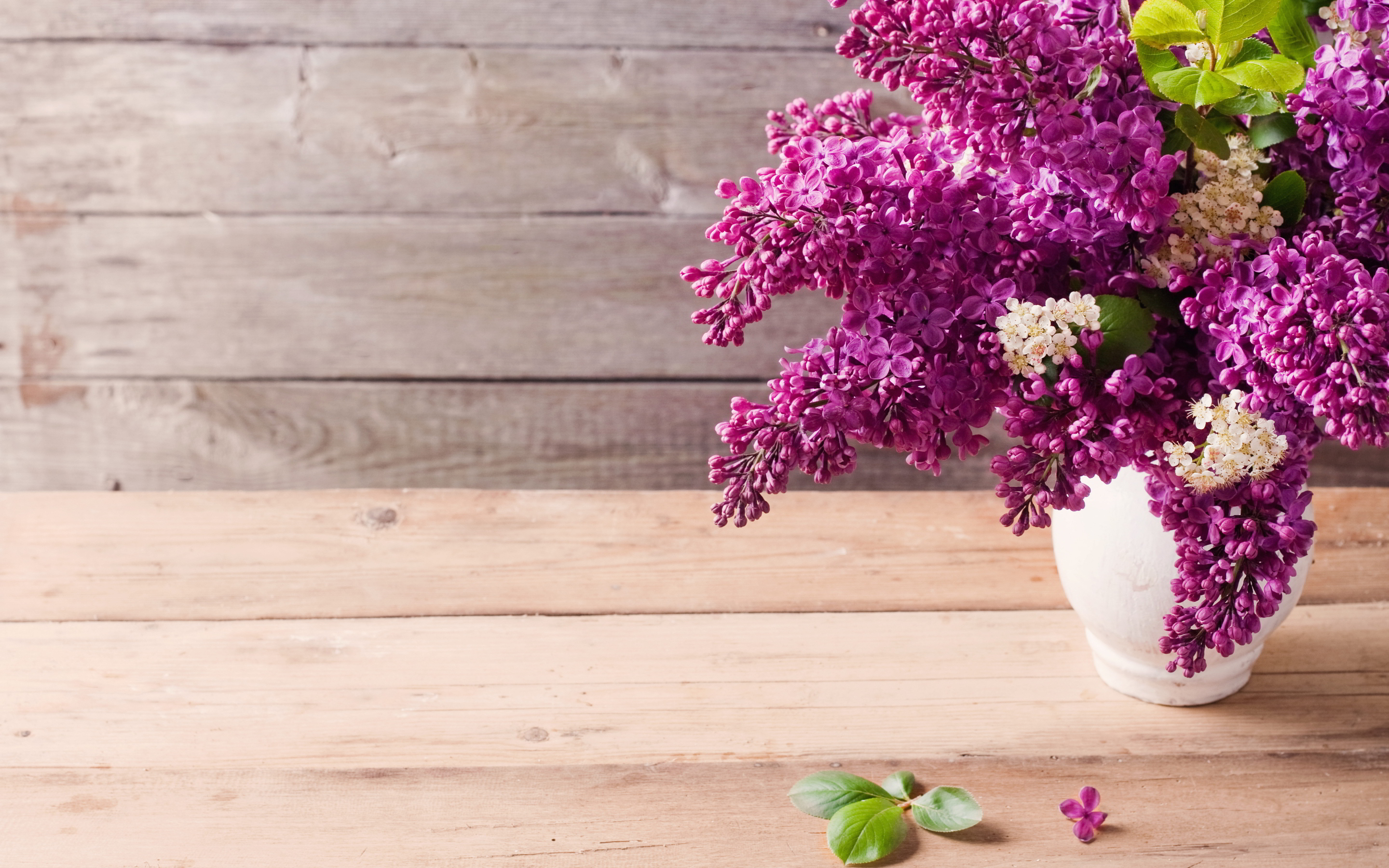 Vase lilac flowers