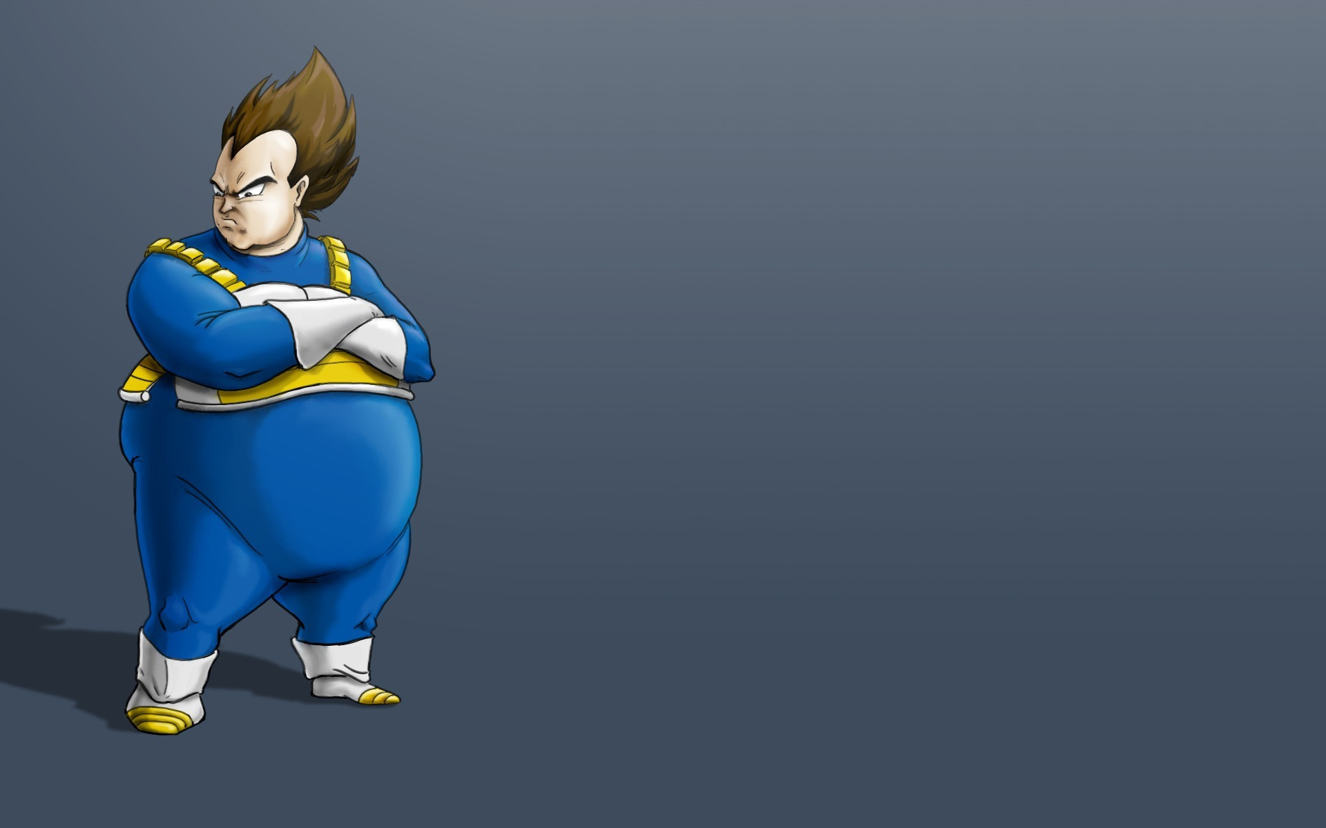 vegeta wallpaper | 1920x1200 | #46916