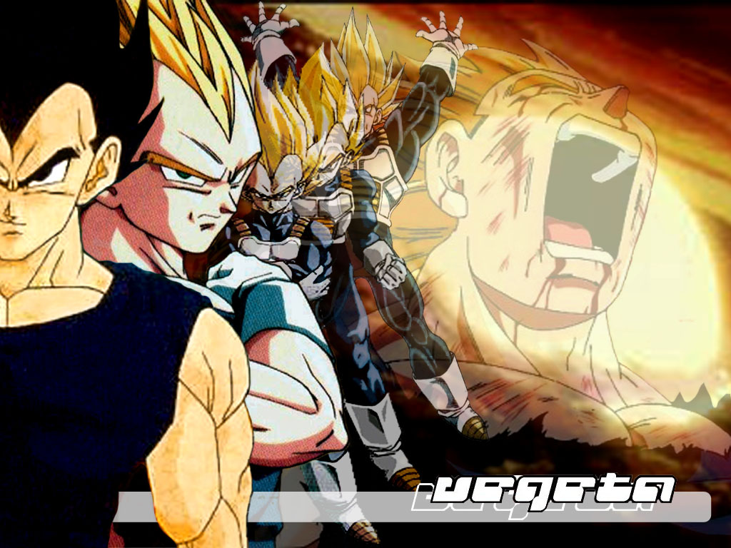 Vegeta Wallpaper
