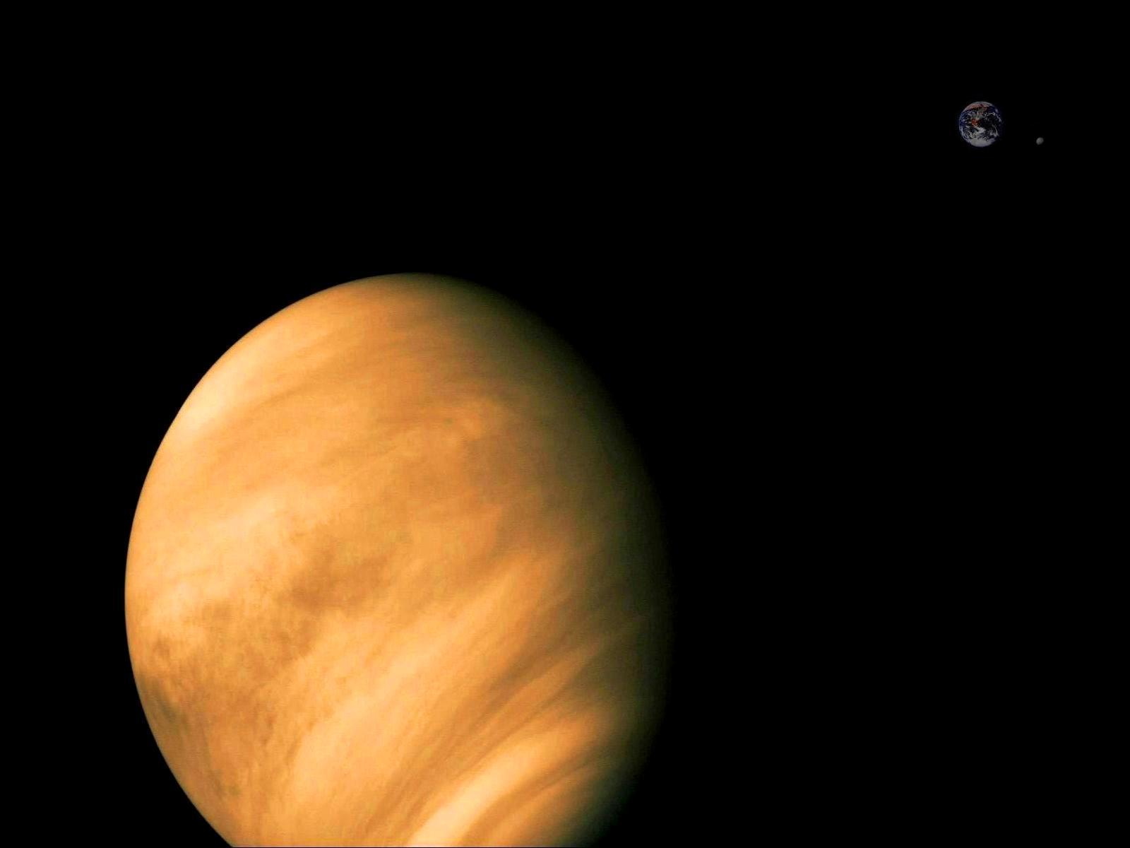 Venus Wallpaper Hd Viewing Gallery