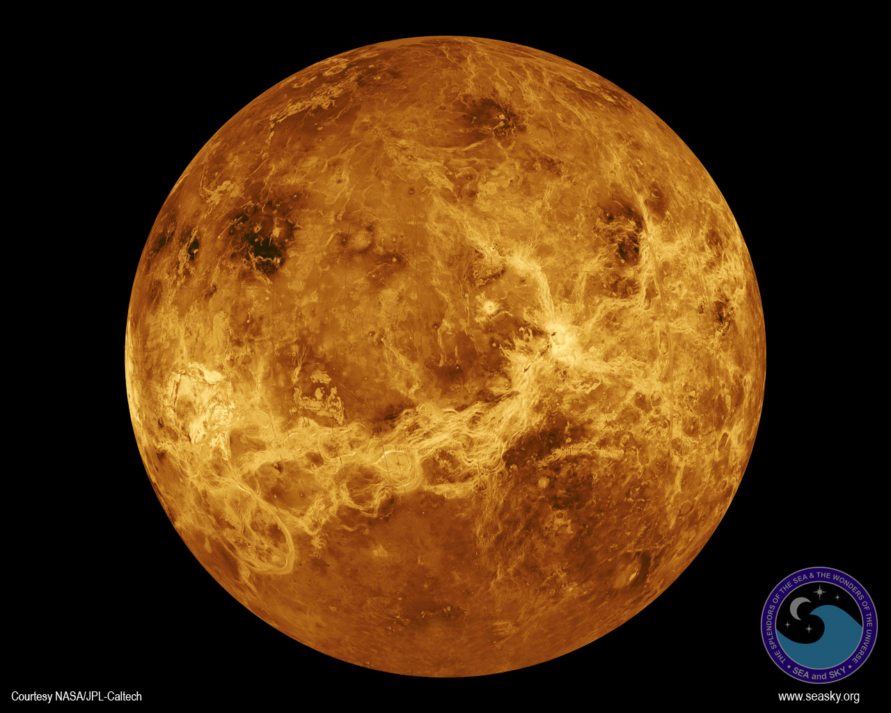 Venus Wallpaper