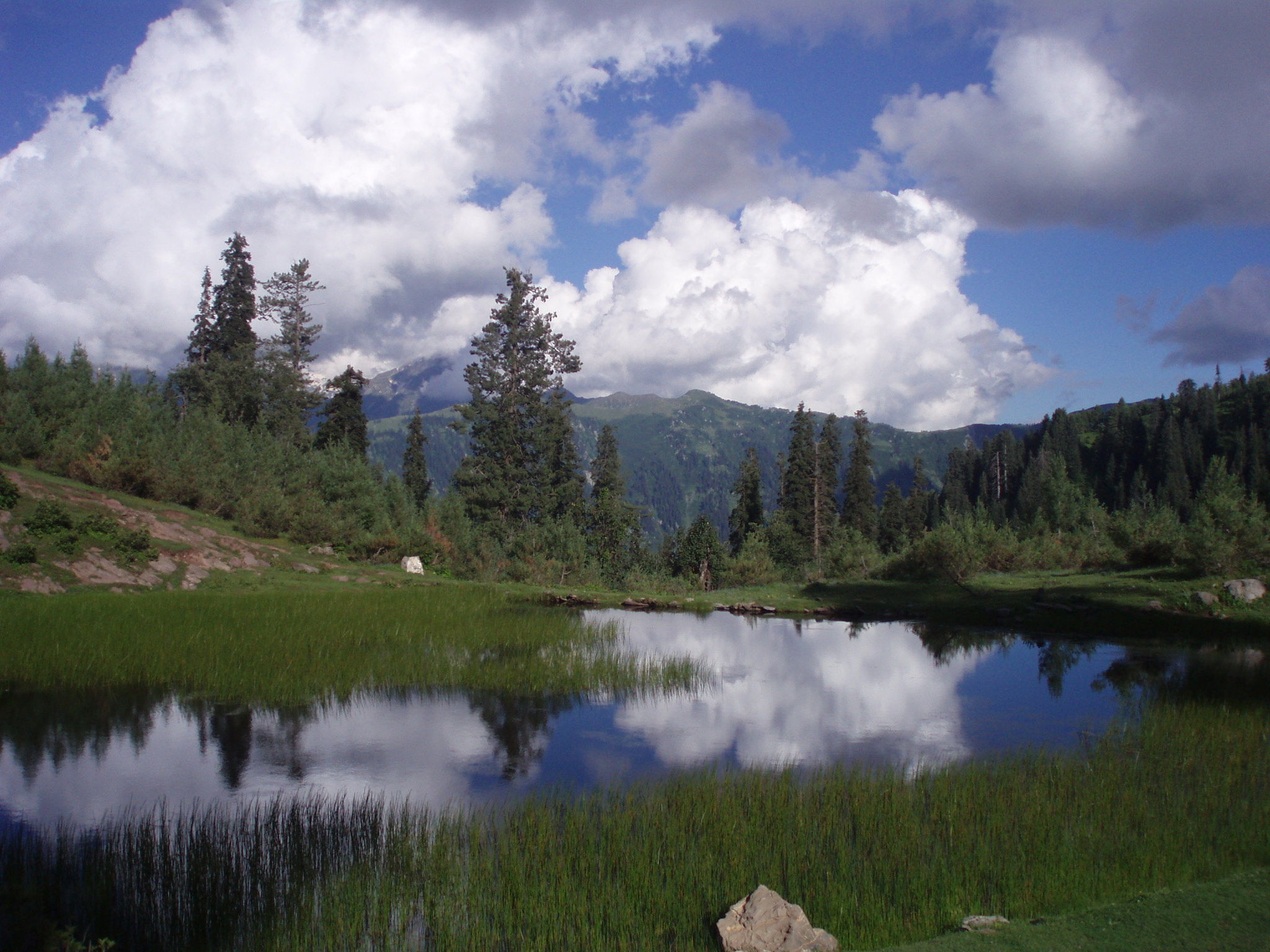 File:Payee Lake Background View July 8 2007.jpg