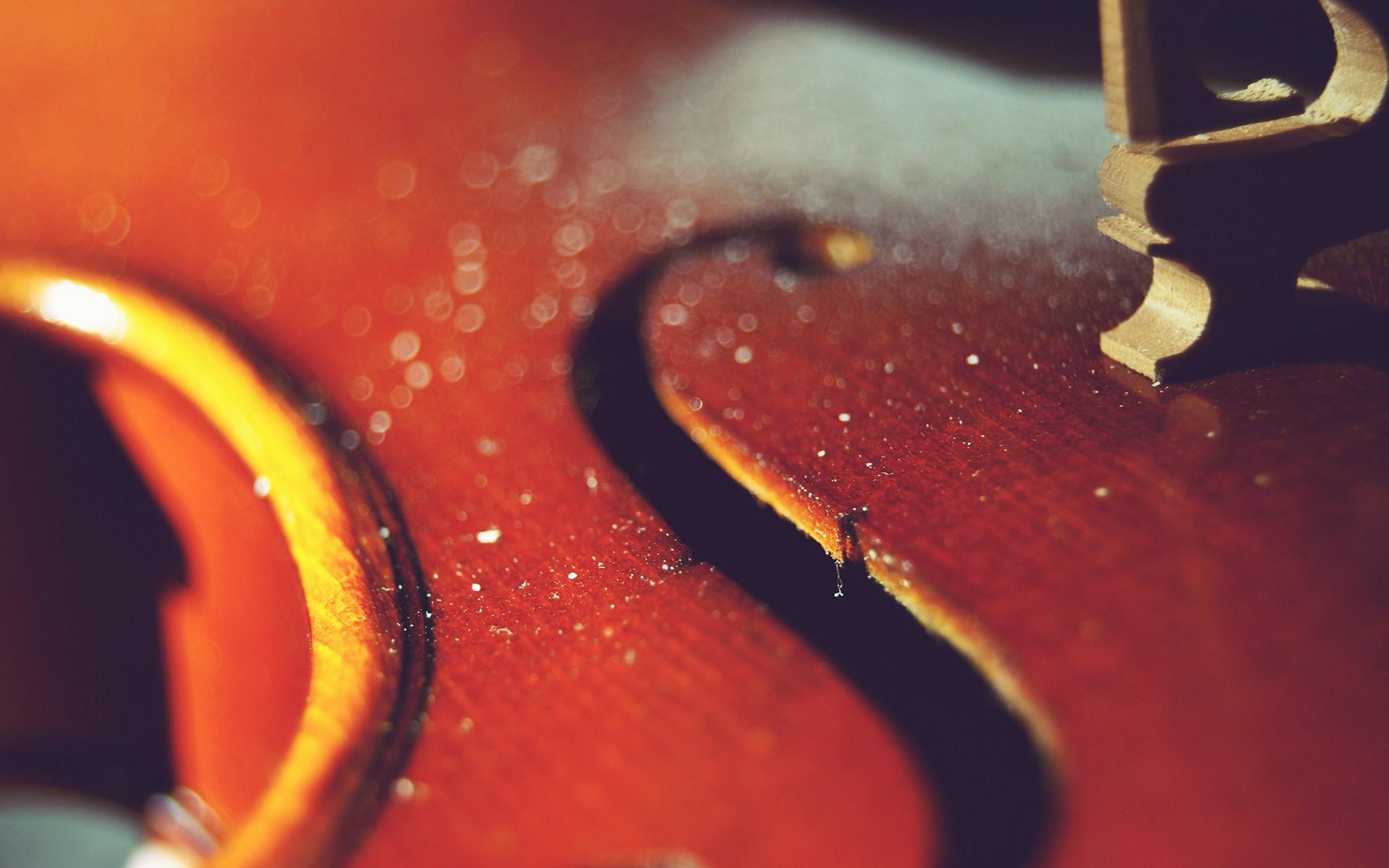 Violin Macro Photo