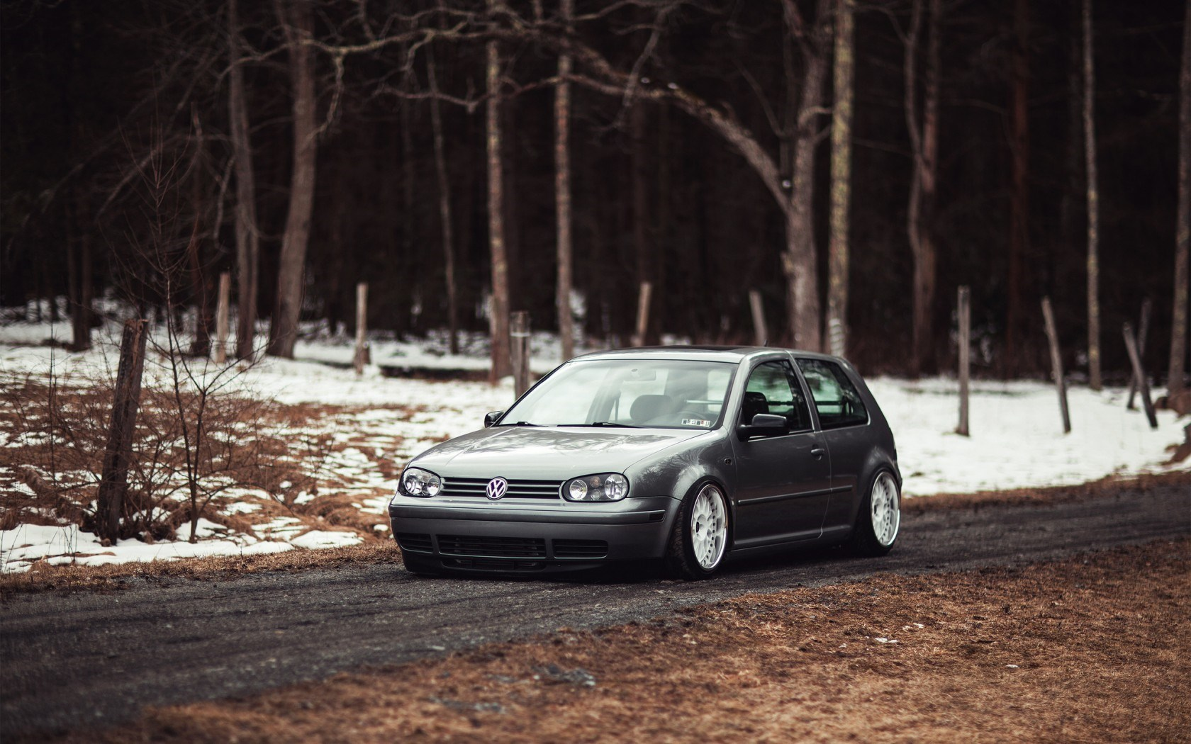 Volkswagen Golf Gray Car