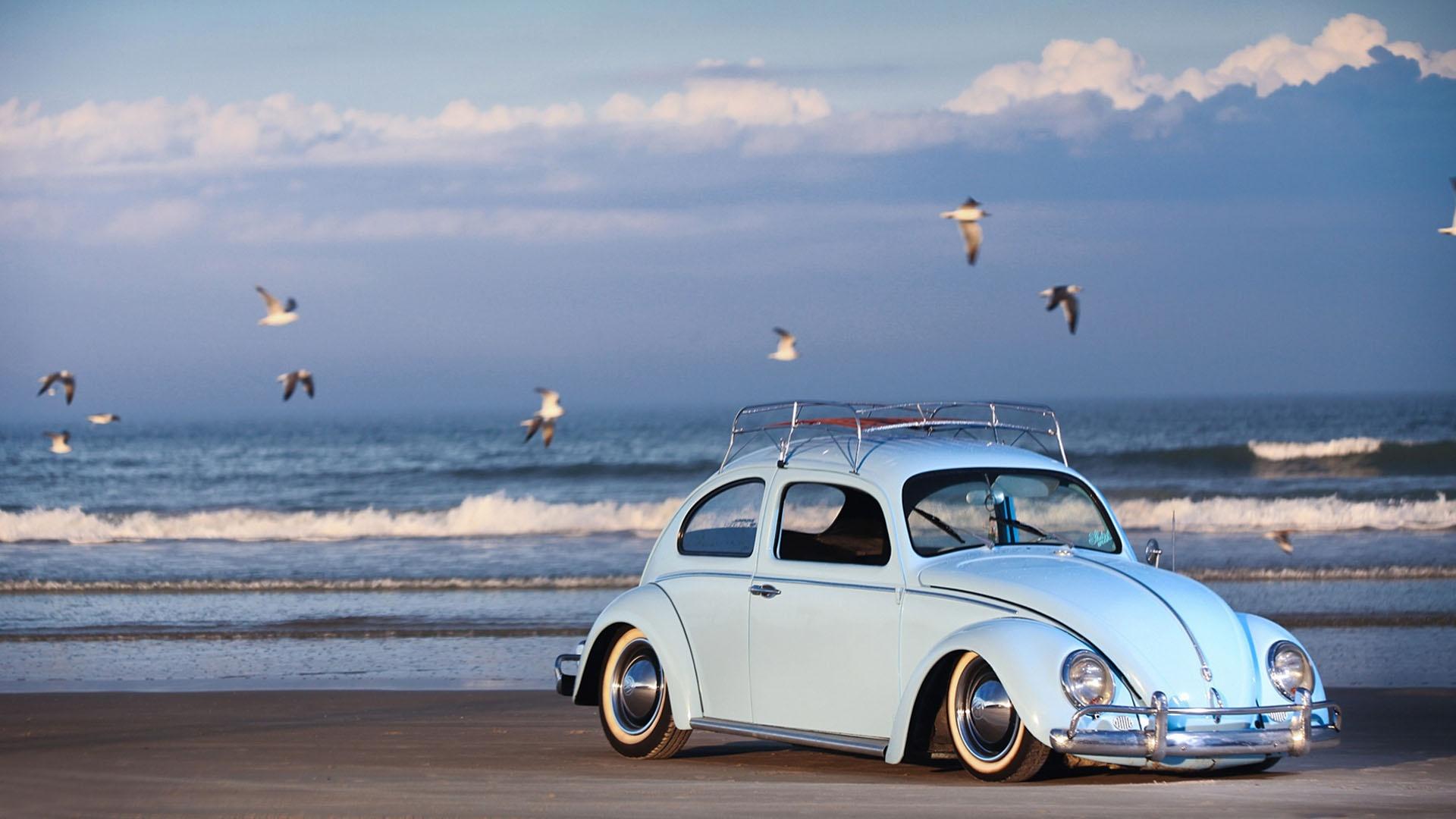 Volkswagen Beetle Vw Wallpaper